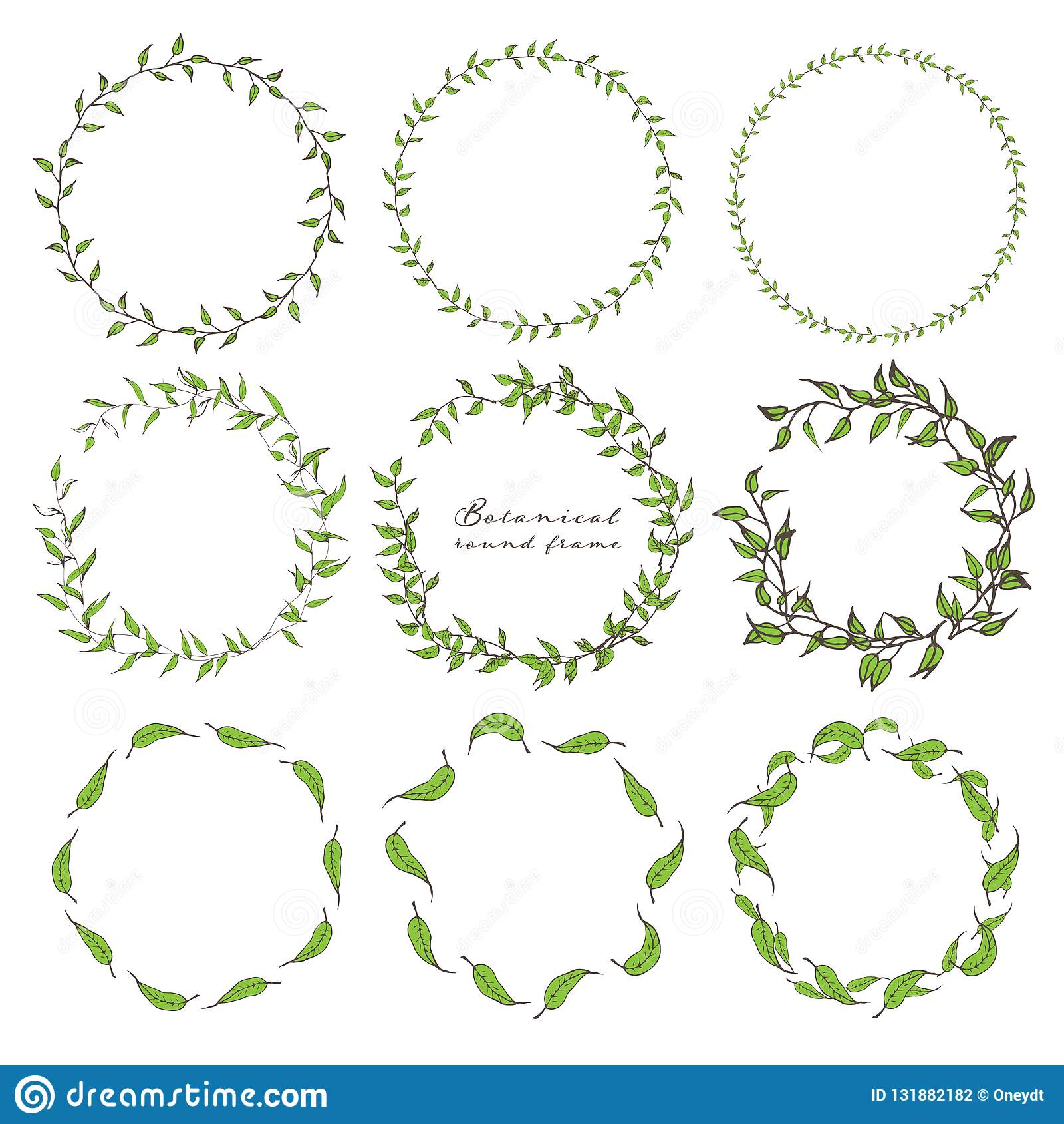 Grupo de quadro redondo botânico, flores tiradas mão, composição botânica, elemento decorativo para o cartão dos convites