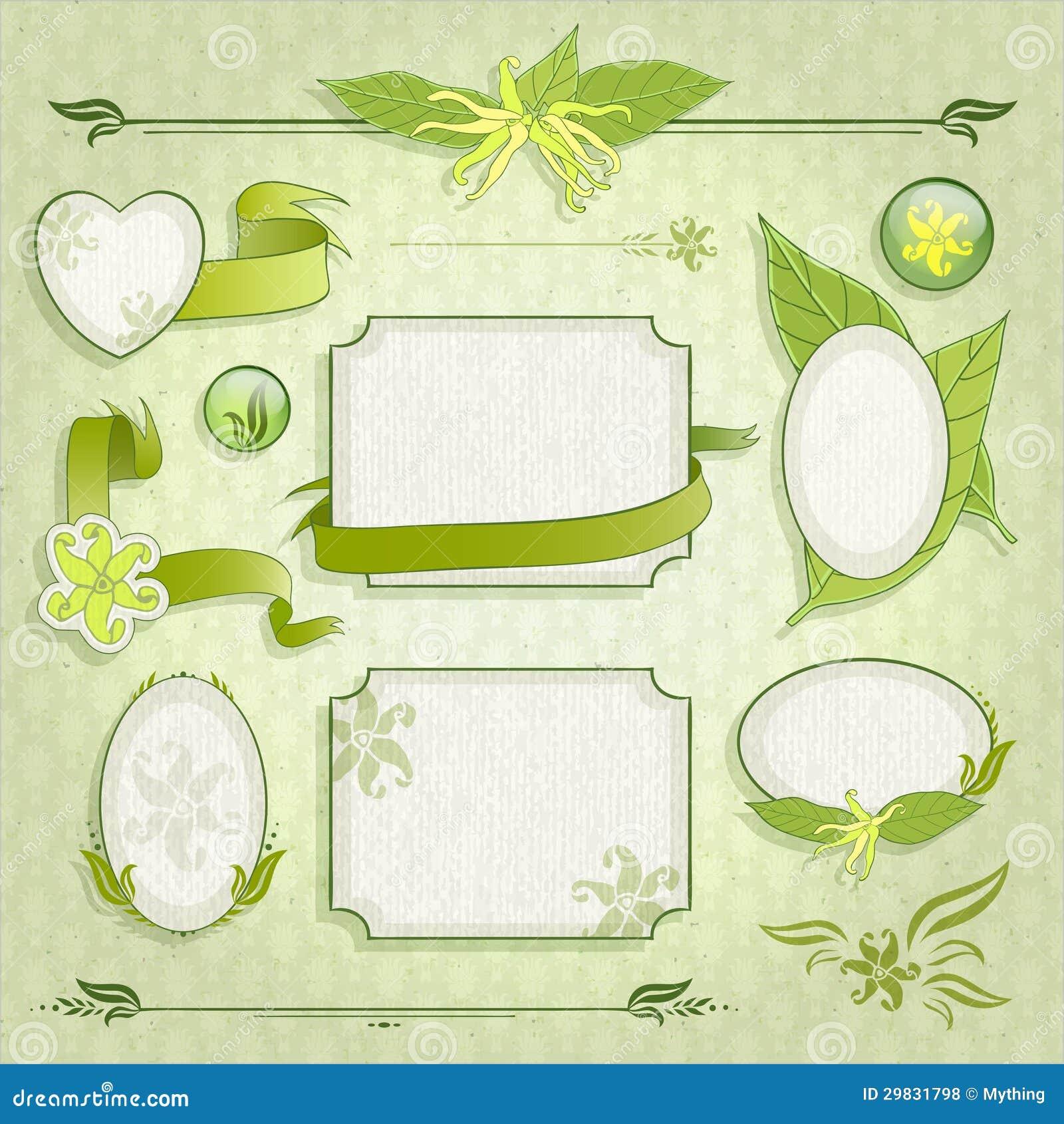 Grupo de quadros florais