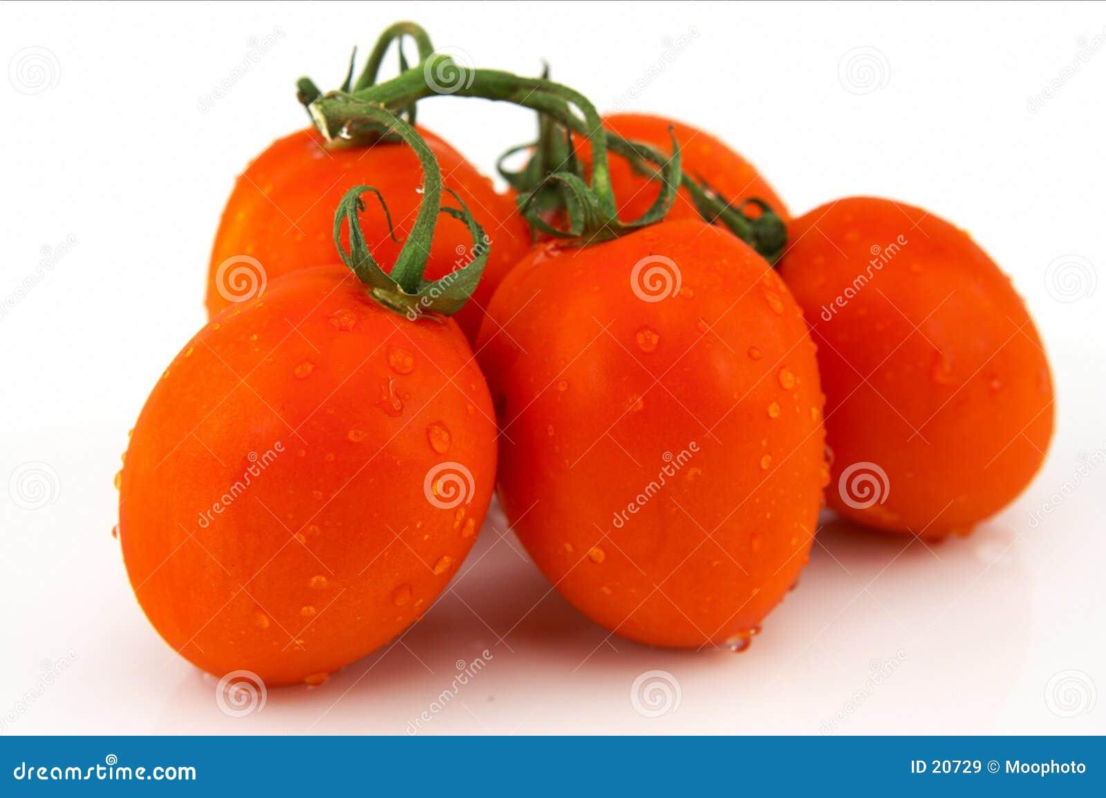 Grupo de tomates de Roma