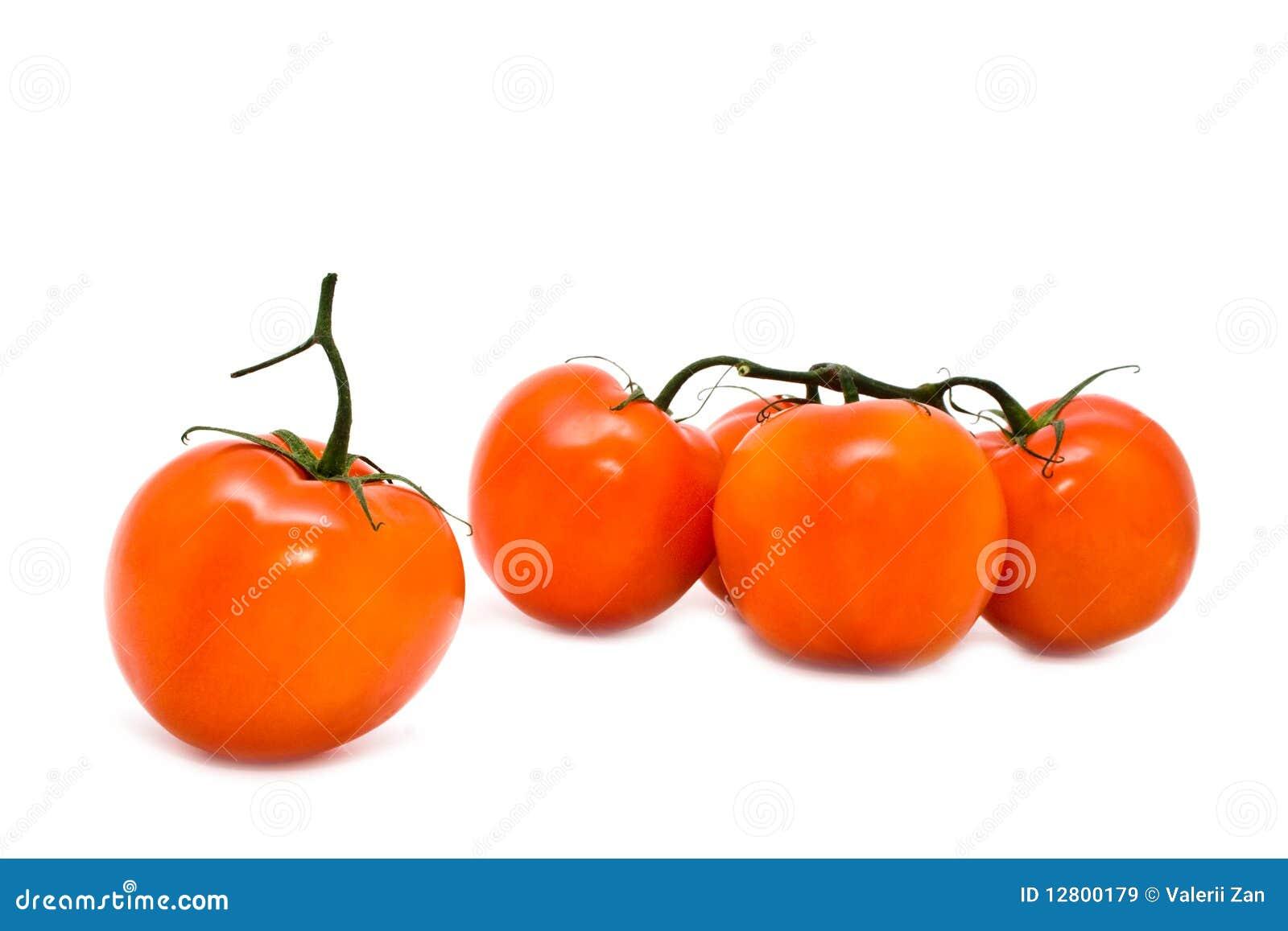 Grupo de tomates suculentos vermelhos