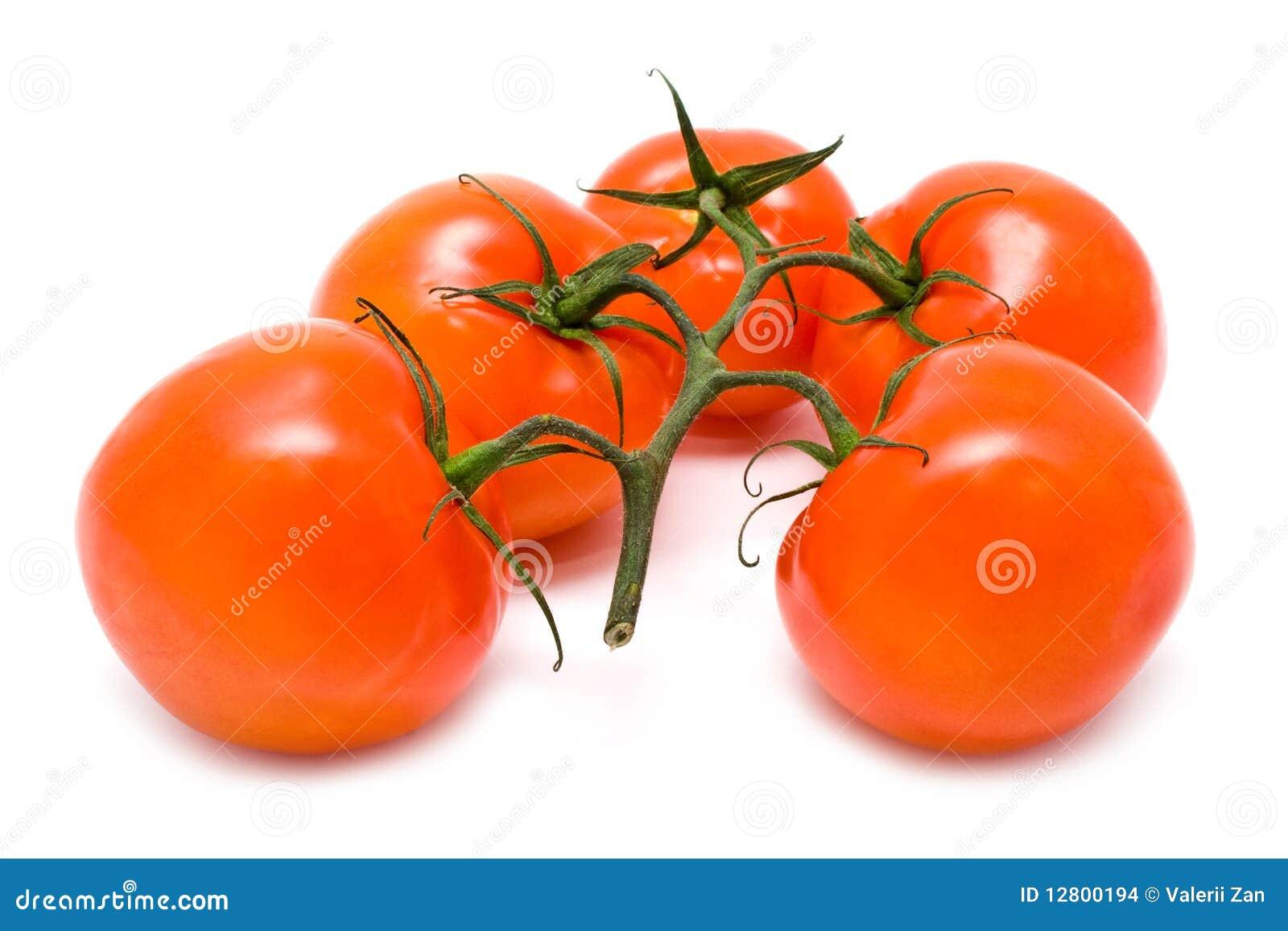 Grupo de tomates vermelhos