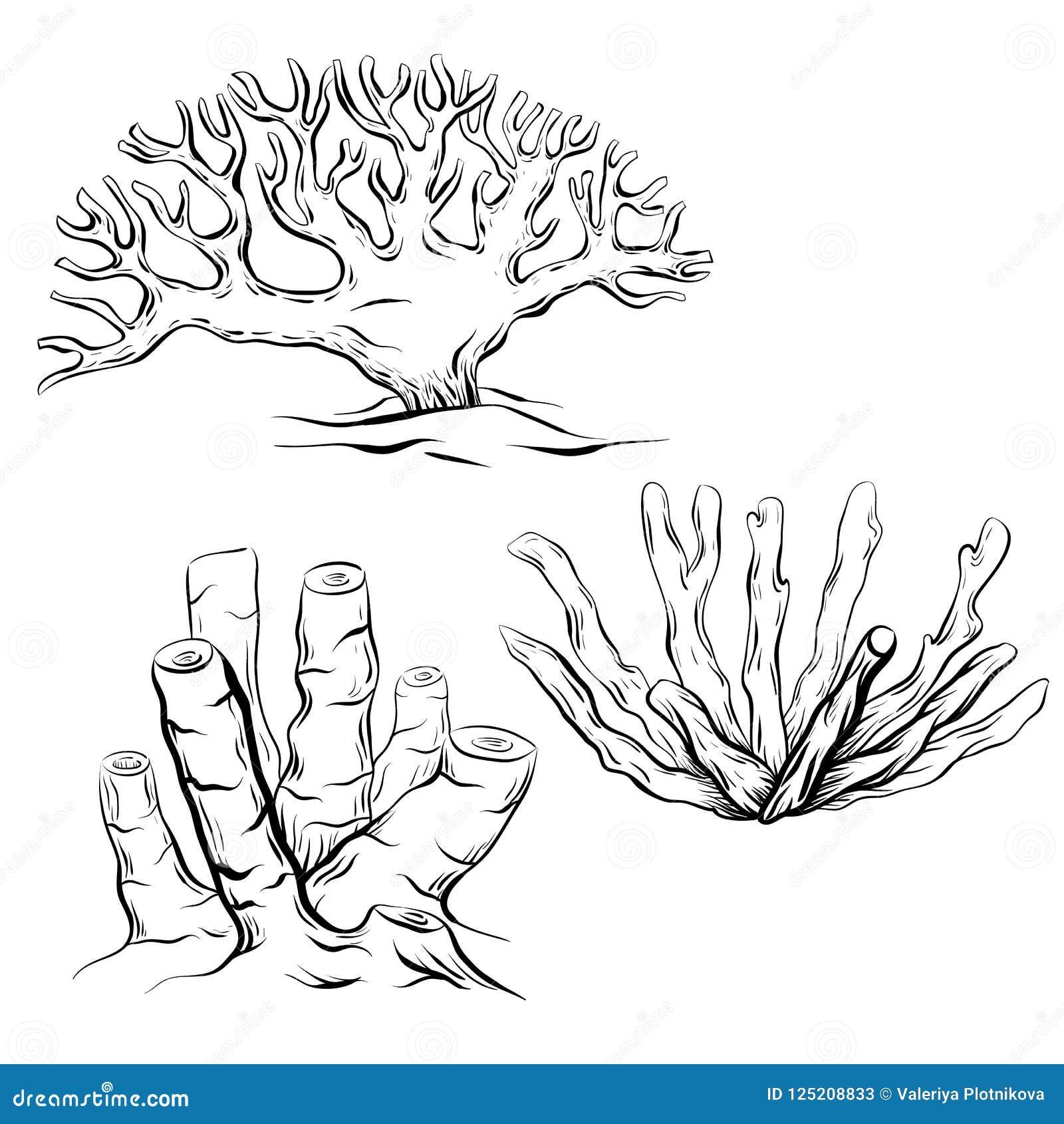 Grupo De Vários Corais Preto E Branco Dos Desenhos Animados