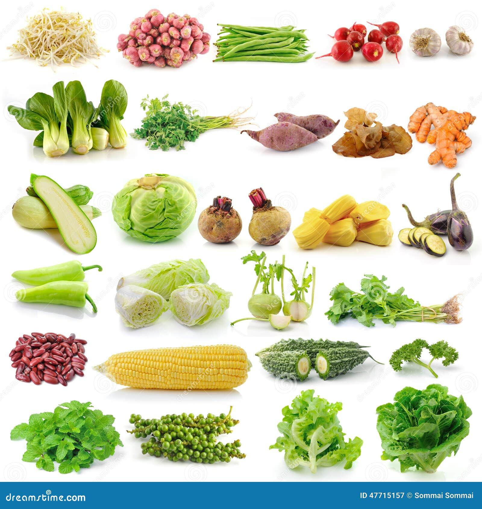 Grupo de vegetal