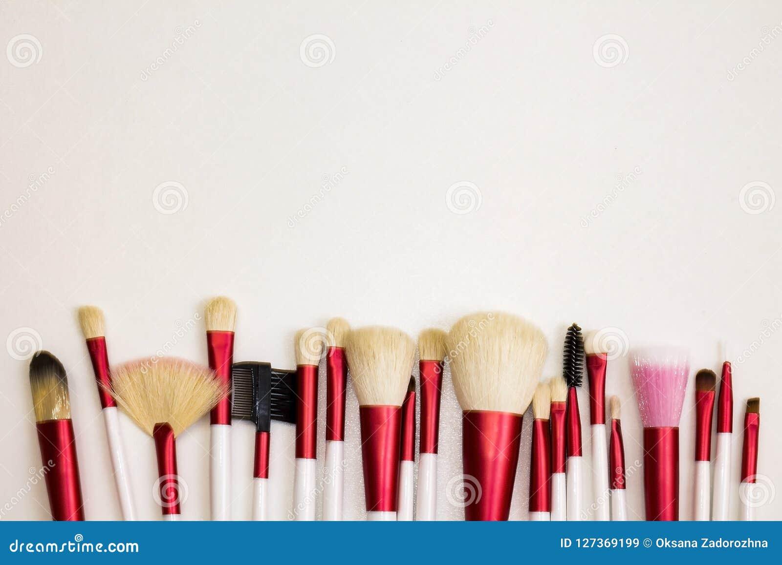Grupo do profissional de escovas para a composição moderna
