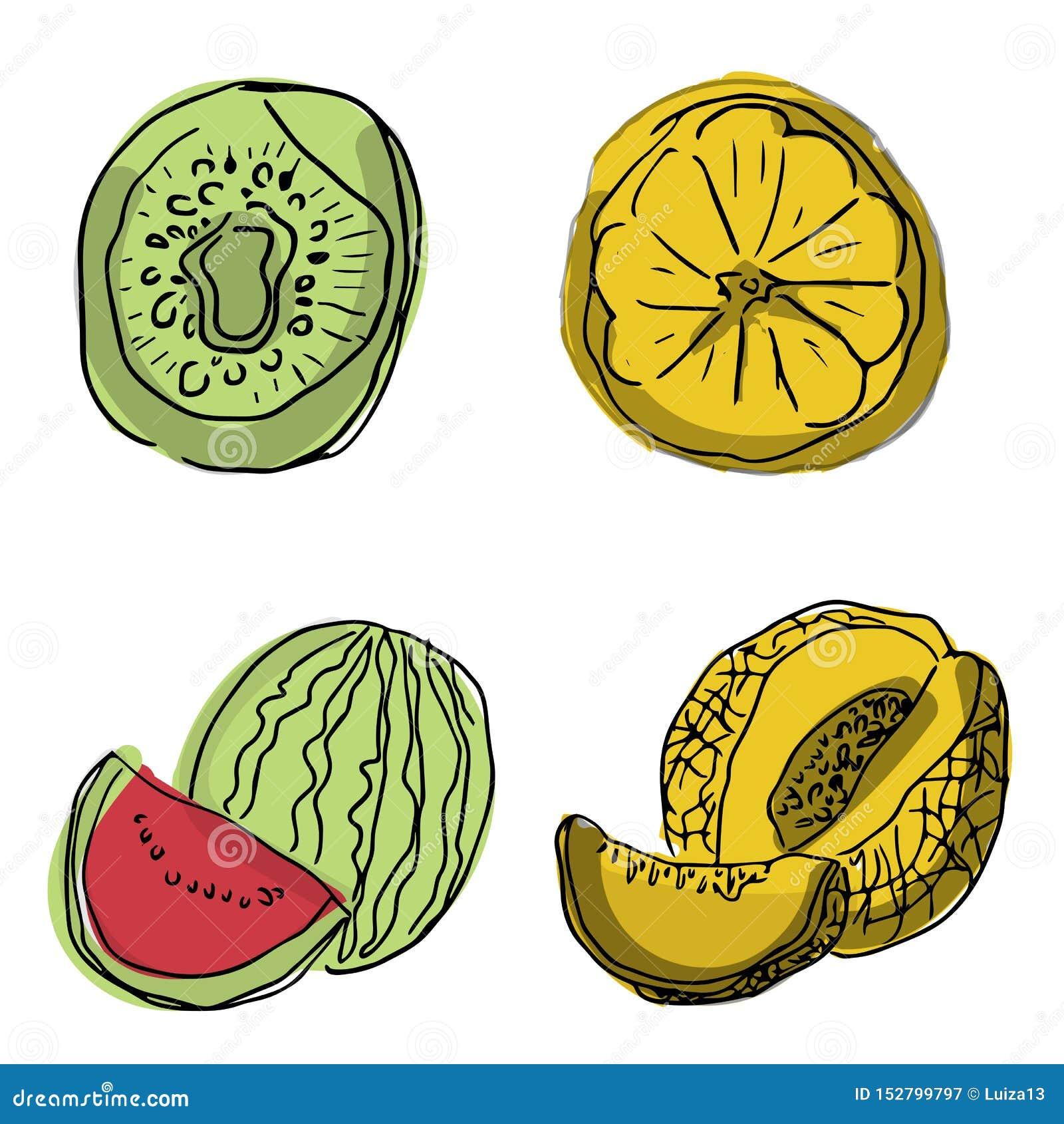 Grupo do vetor de fatias do fruto: melancia, fruto, quivi, abacaxi, toranja, maçã Coleção do alimento do verão Os frutos frescos