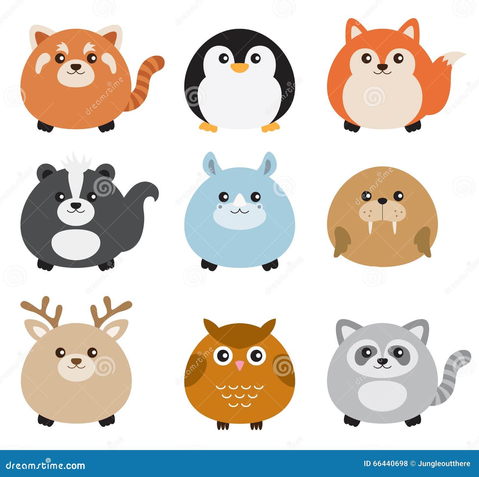 Grupo gordo bonito do animal