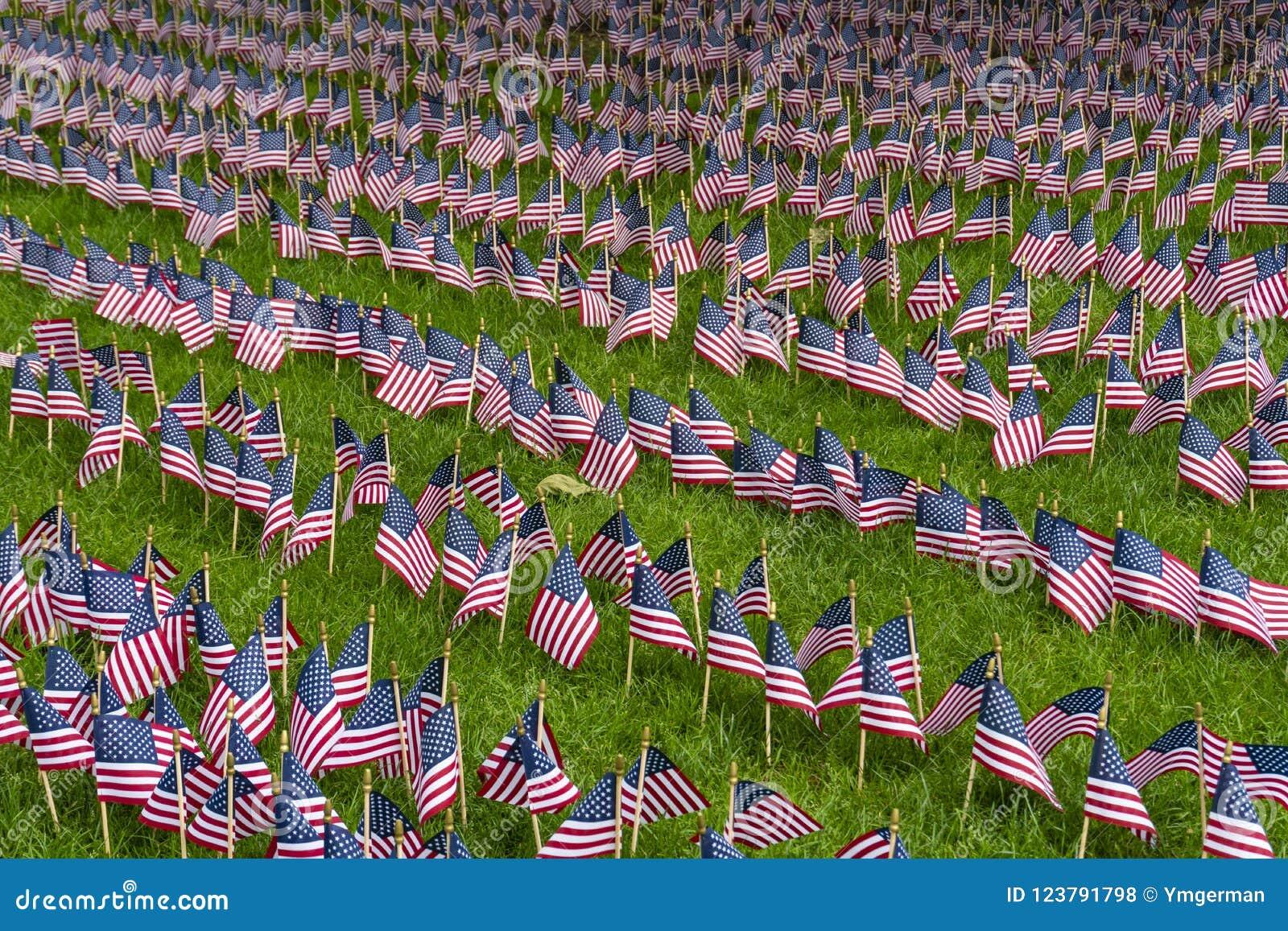 Grupo grande de banderas americanas en un césped