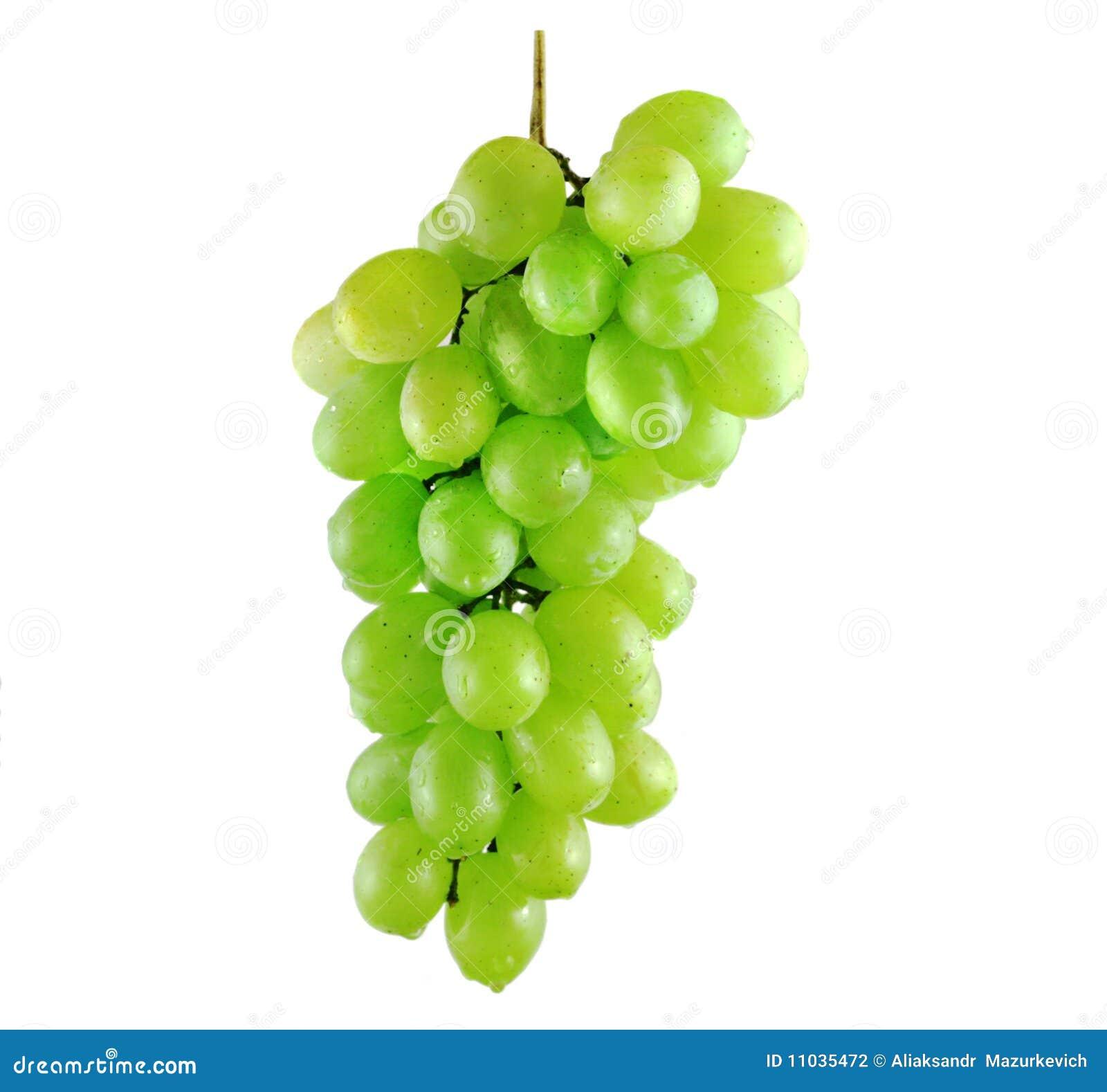 Grupo molhado da uva