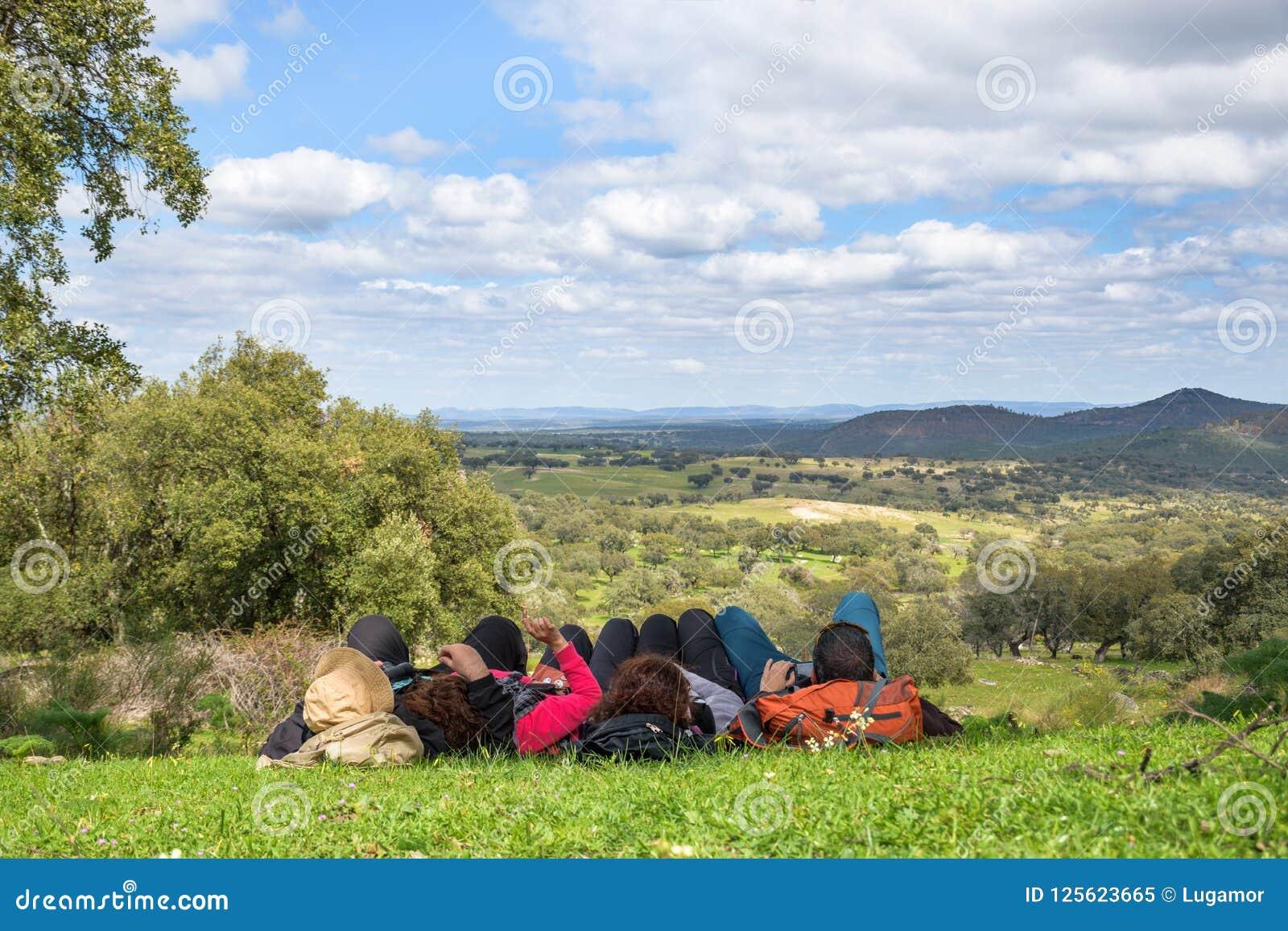 Grupp människor som ligger se ner in mot ängen i skuggan av en ek på en härlig vårdag
