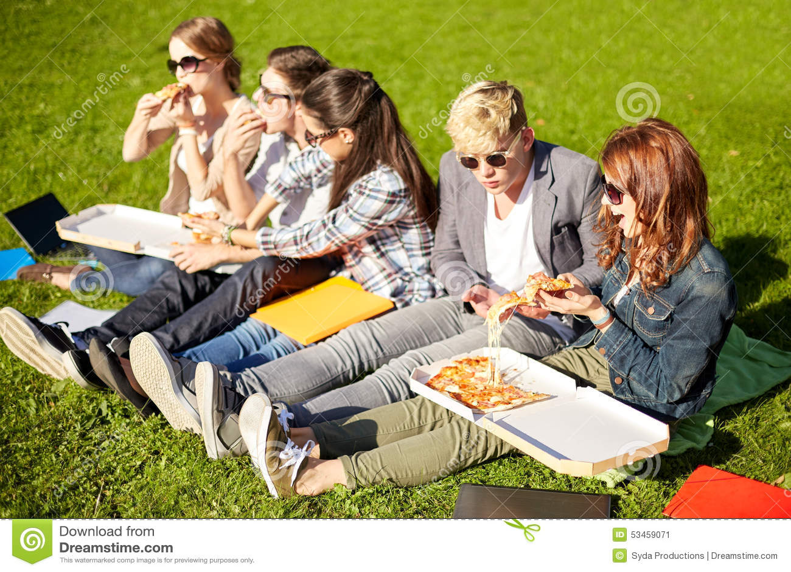 Gruppe Jugendstudenten, die Pizza auf Gras essen