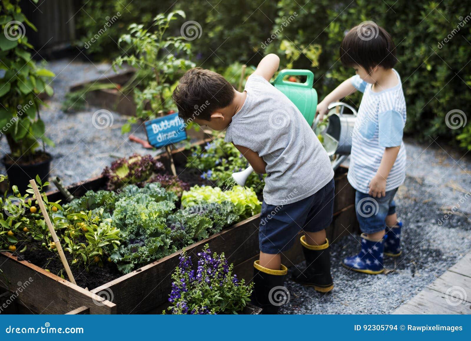 Gruppe Kindergartenkinder, die draußen im Garten arbeiten lernen