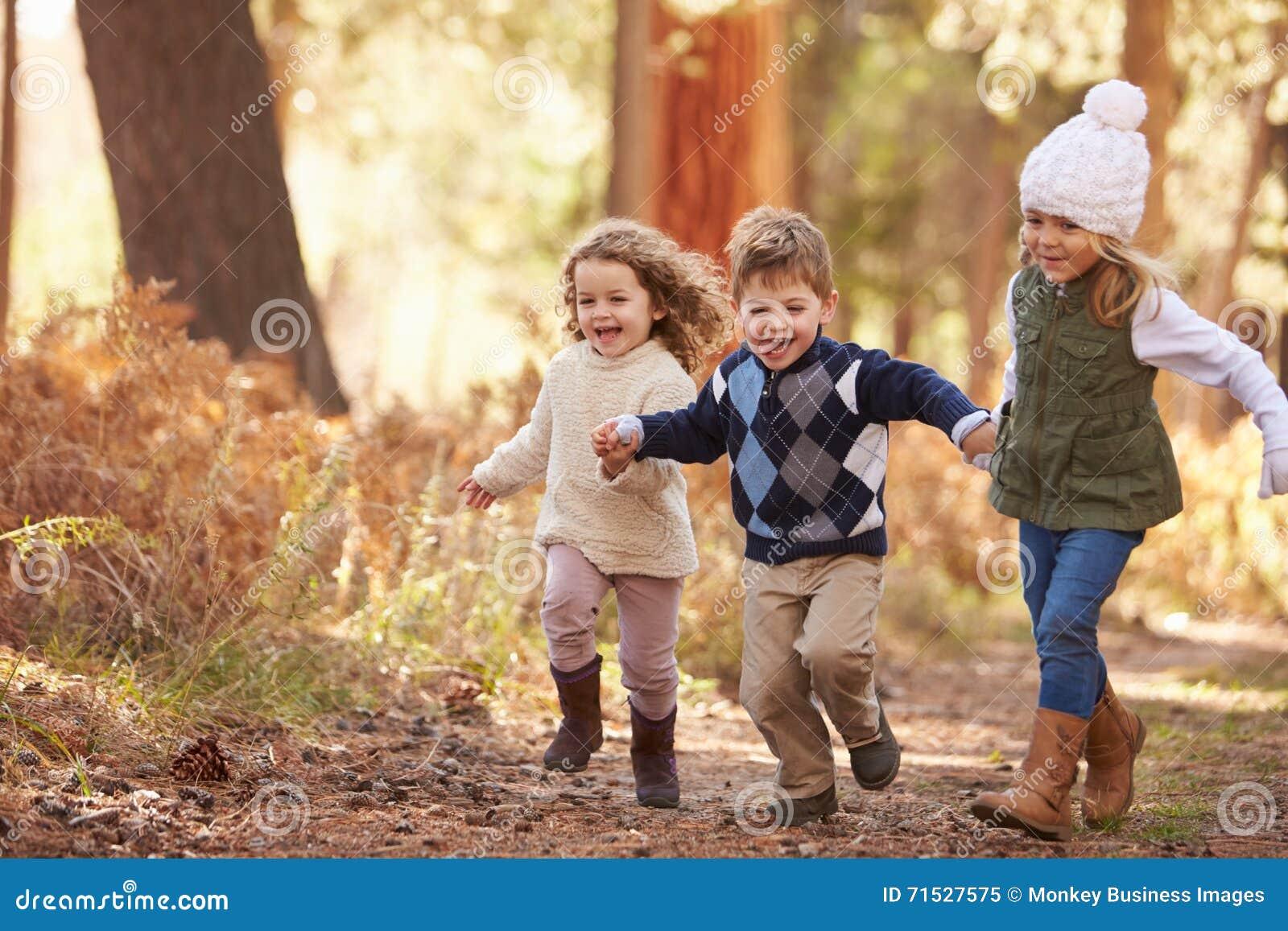 Gruppe Kleinkinder, Die Entlang Weg In Autumn Forest ...