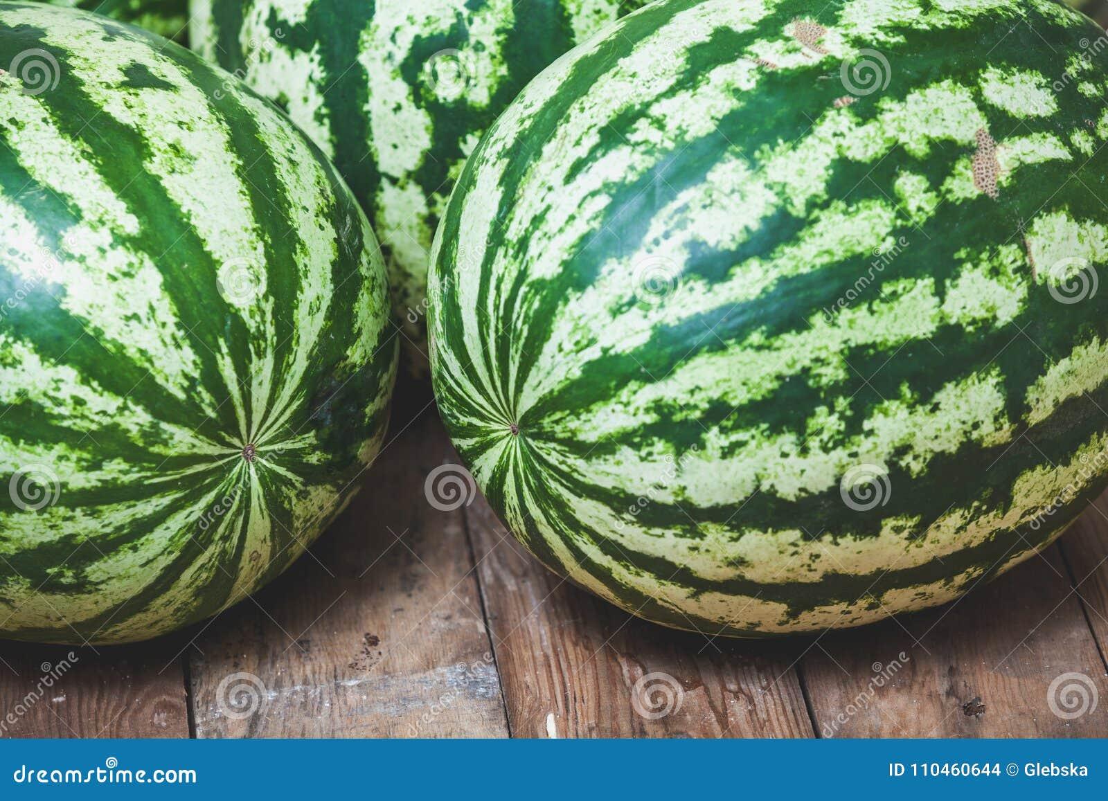 Gruppen av randiga vattenmelon ligger på träbräden