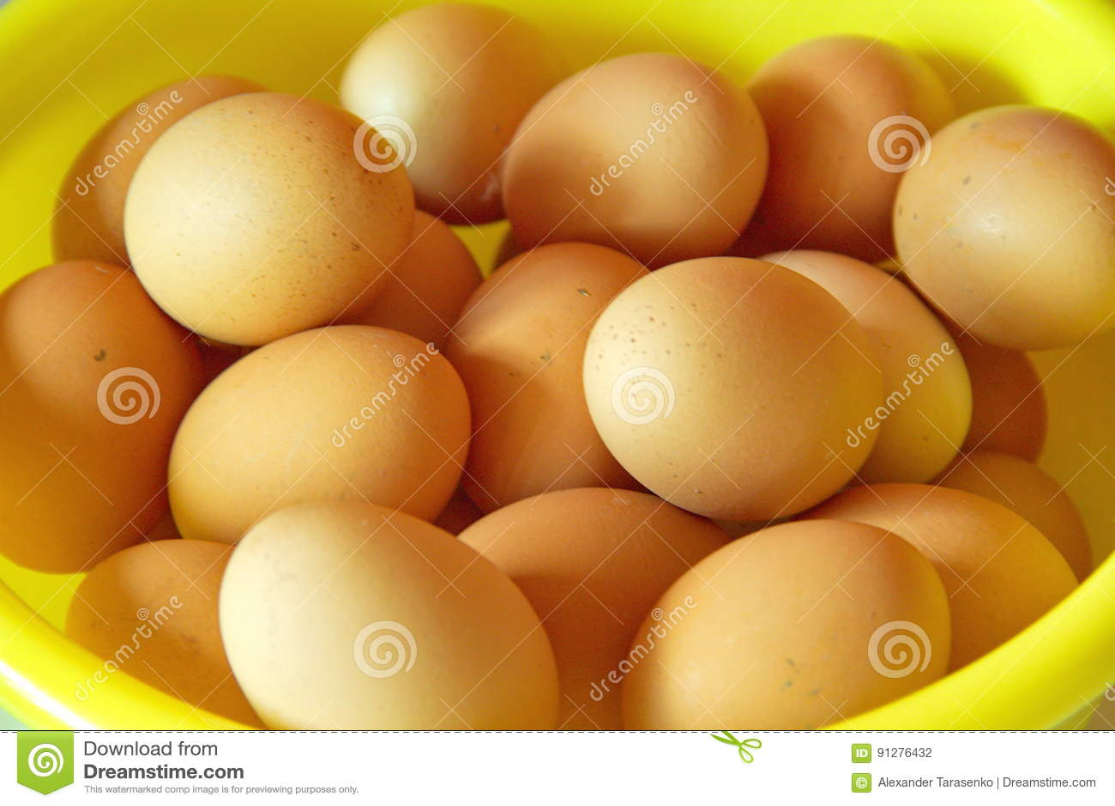 Gruppering av ägg, sikt för öga för fågel` s