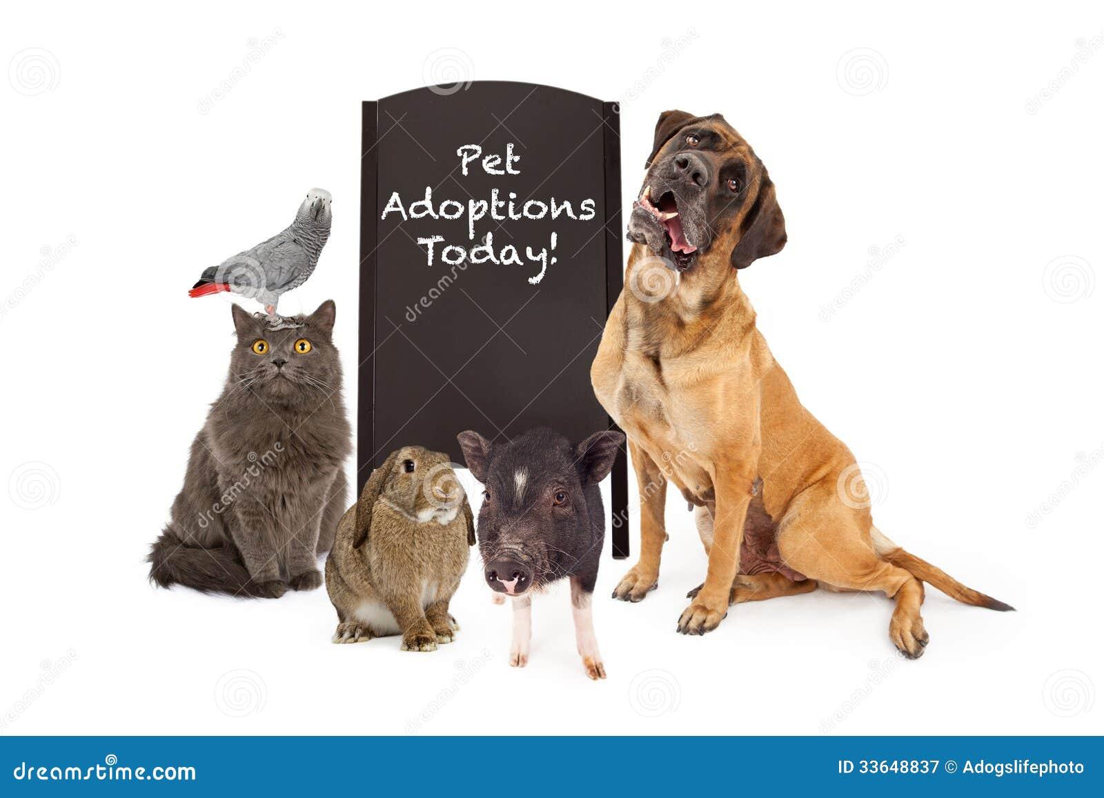 Gruppo di animali domestici intorno al segno di evento di adozione