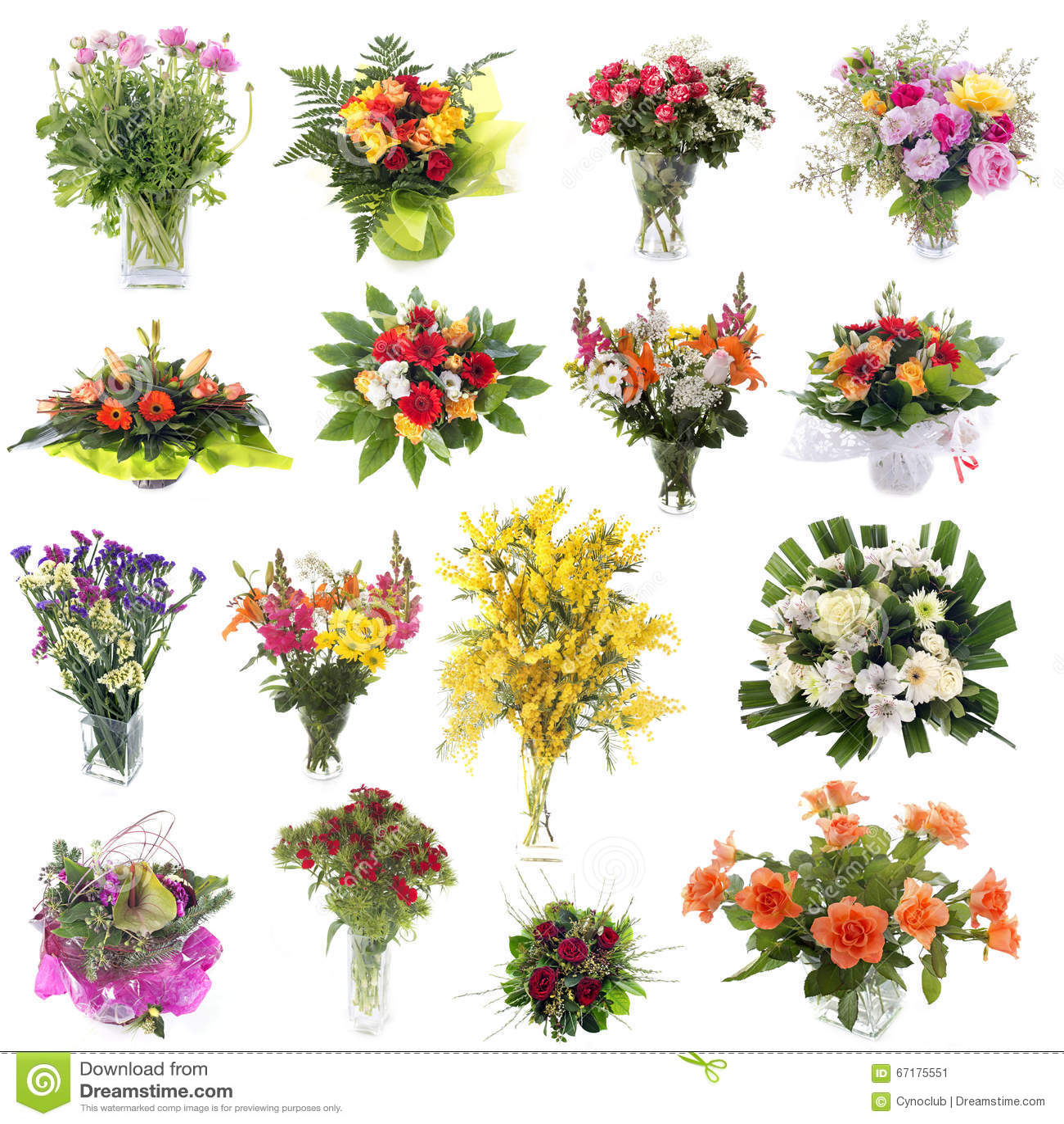nomi dei fiori di co nomi dei fiori mazzi di fiori nomi