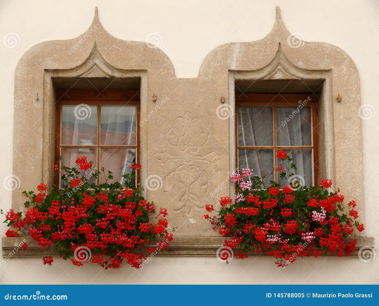 Gruyère Schweiz 07/30/2009 Tvilling- fönster med blommor