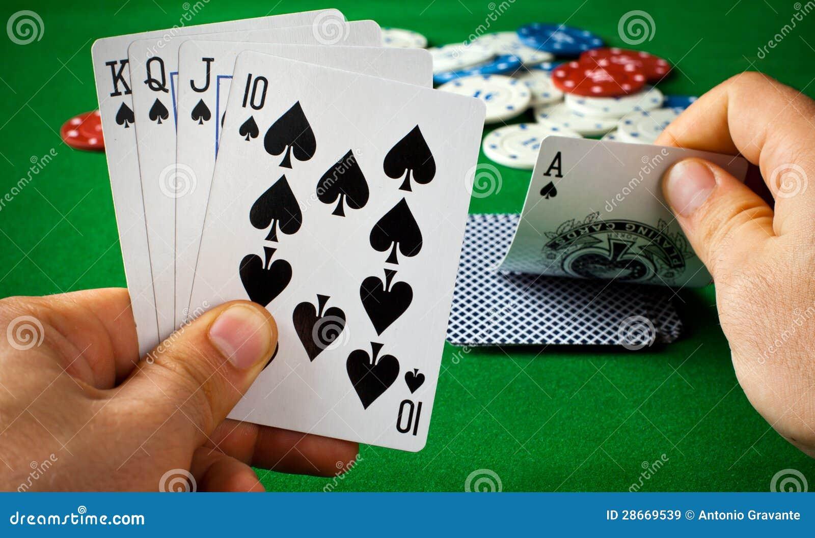 Grzebak karty