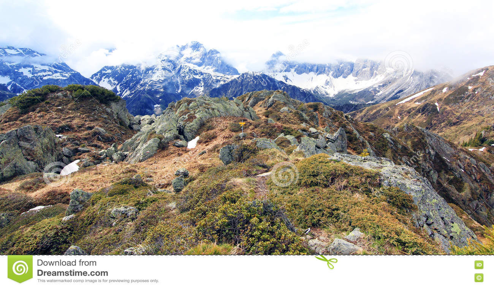 Grzebienia ślad na szczycie alps (lesachtal)