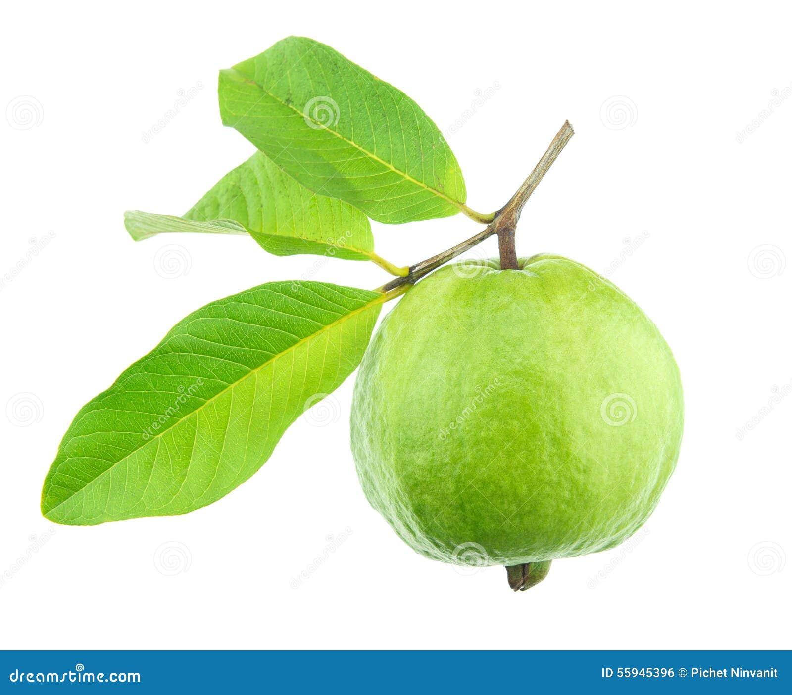 Guajava-Frucht