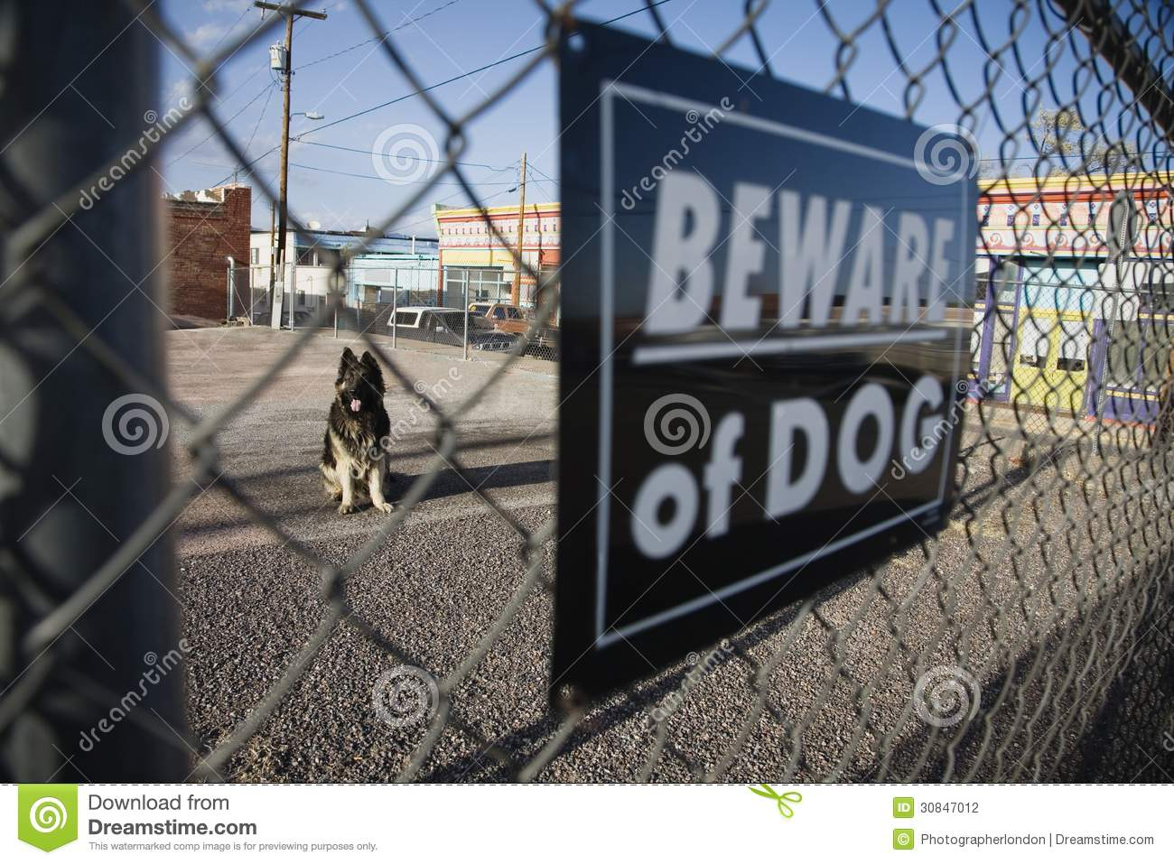 Guard Dog Behind Beware Of Dog Sign On Fence Stock