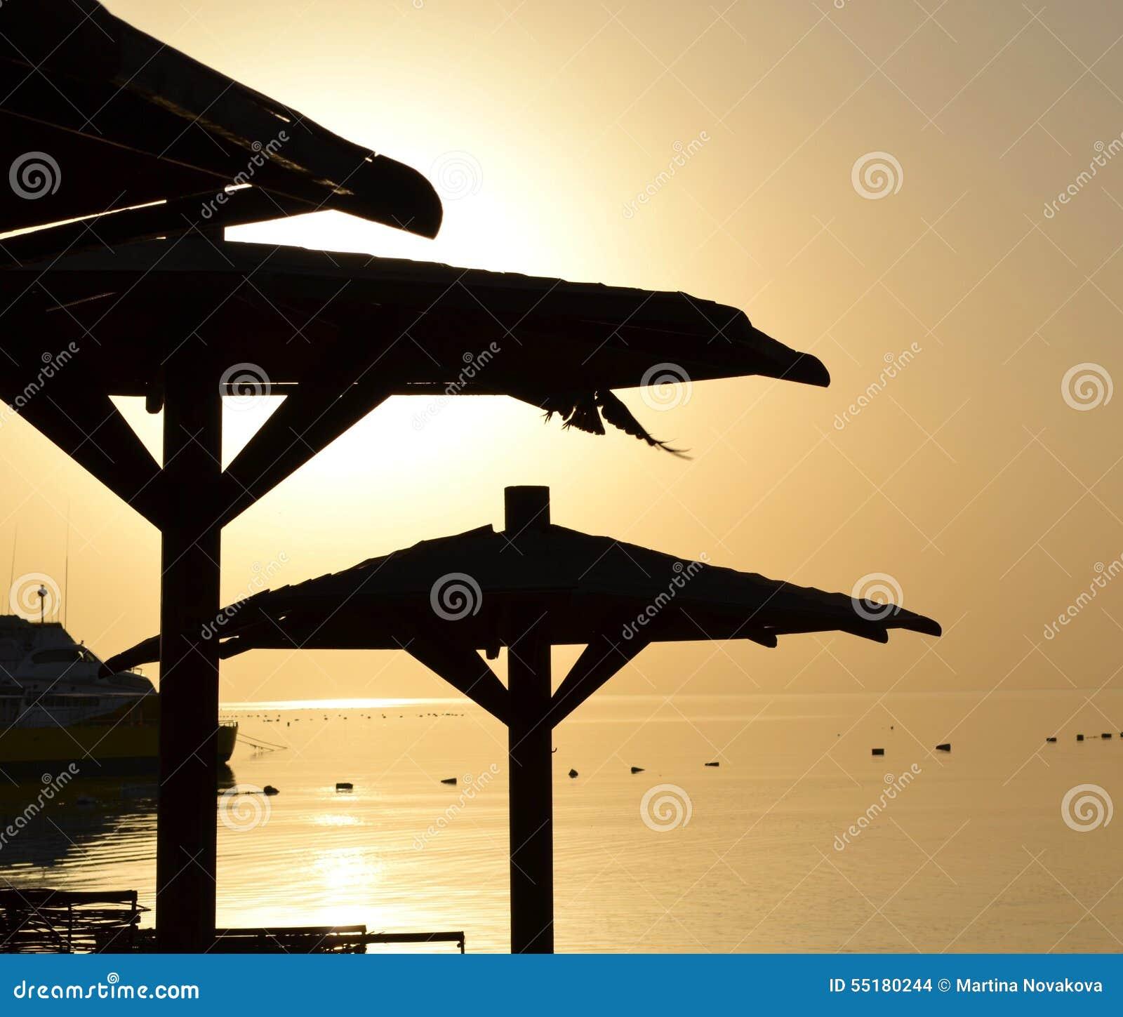 Guarda-chuva de Palm Beach no por do sol