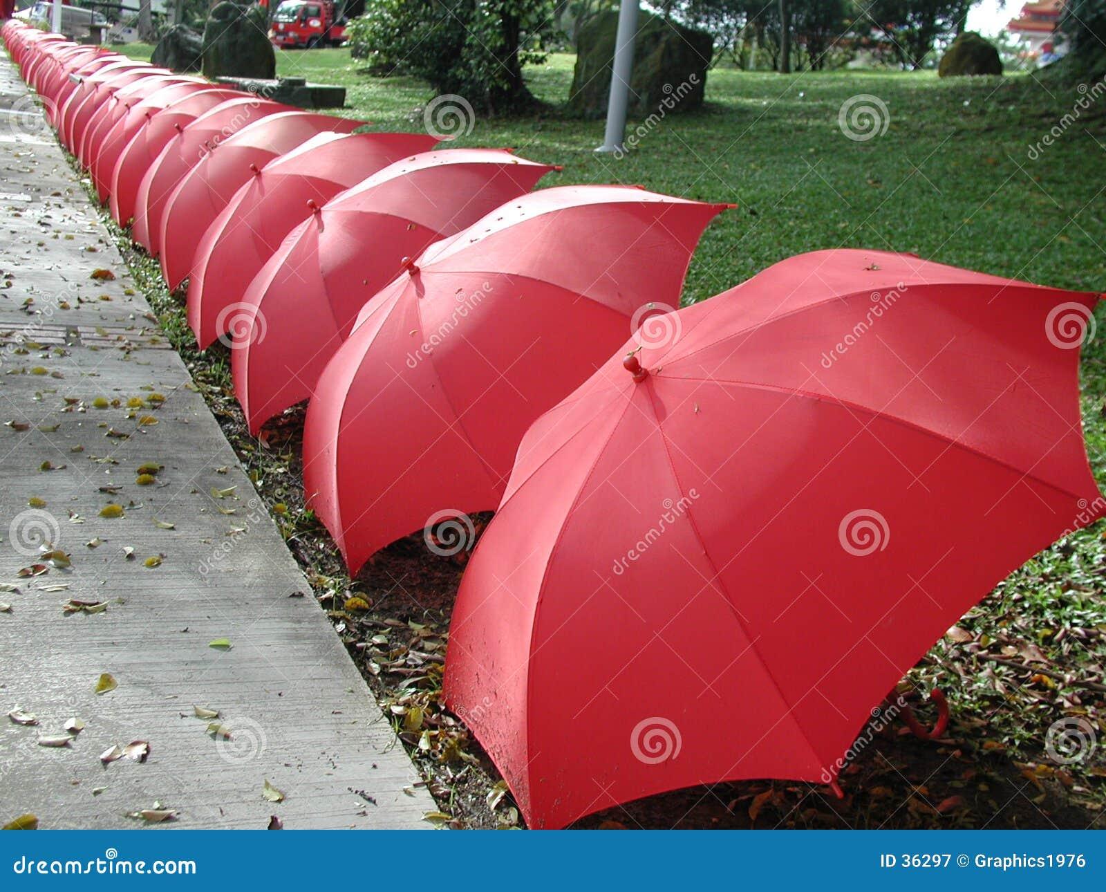 Guarda-chuvas em uma linha