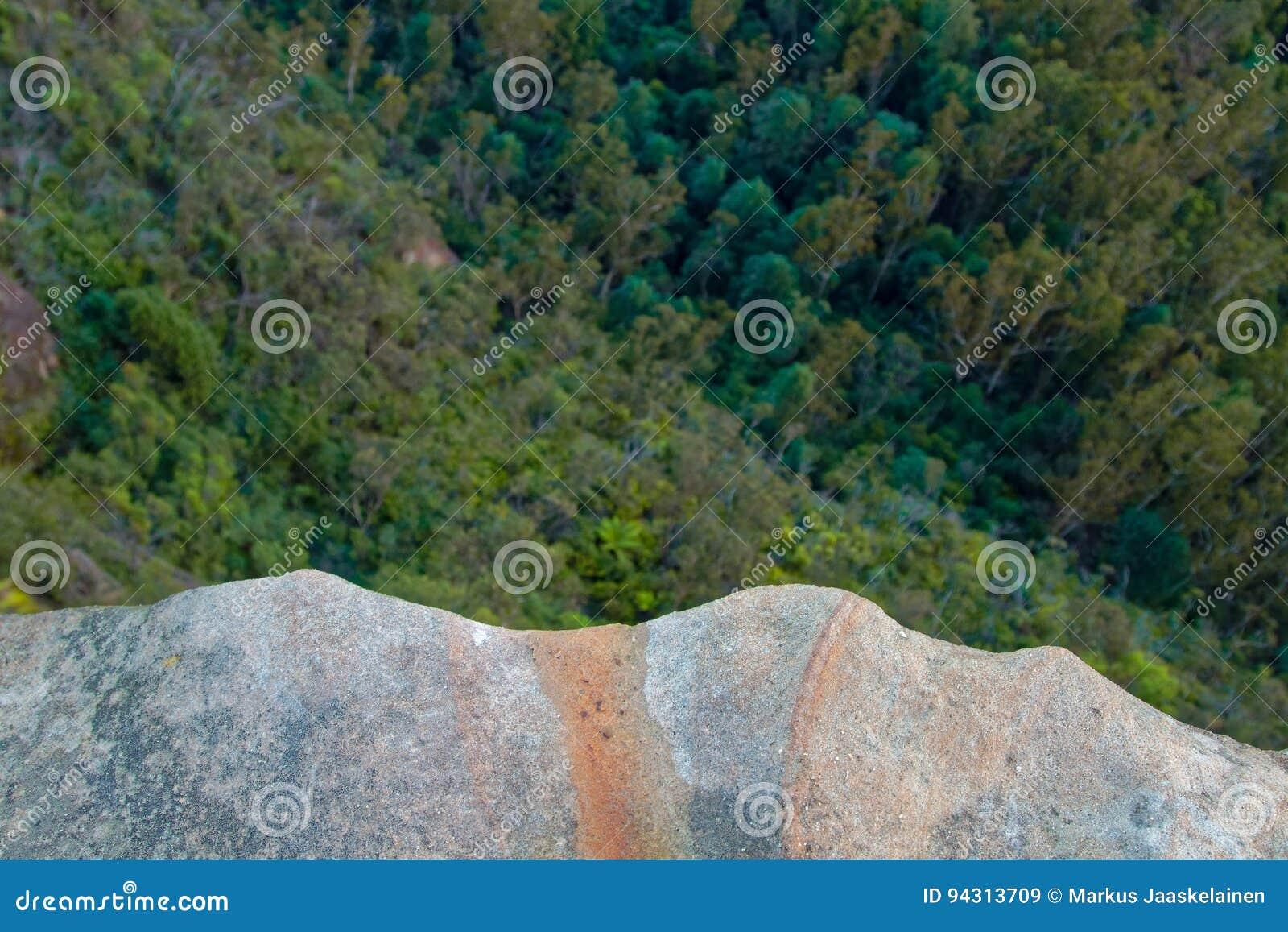 Guardando giù dalla scogliera della roccia dentro sugli alberi e sulle cime dell albero