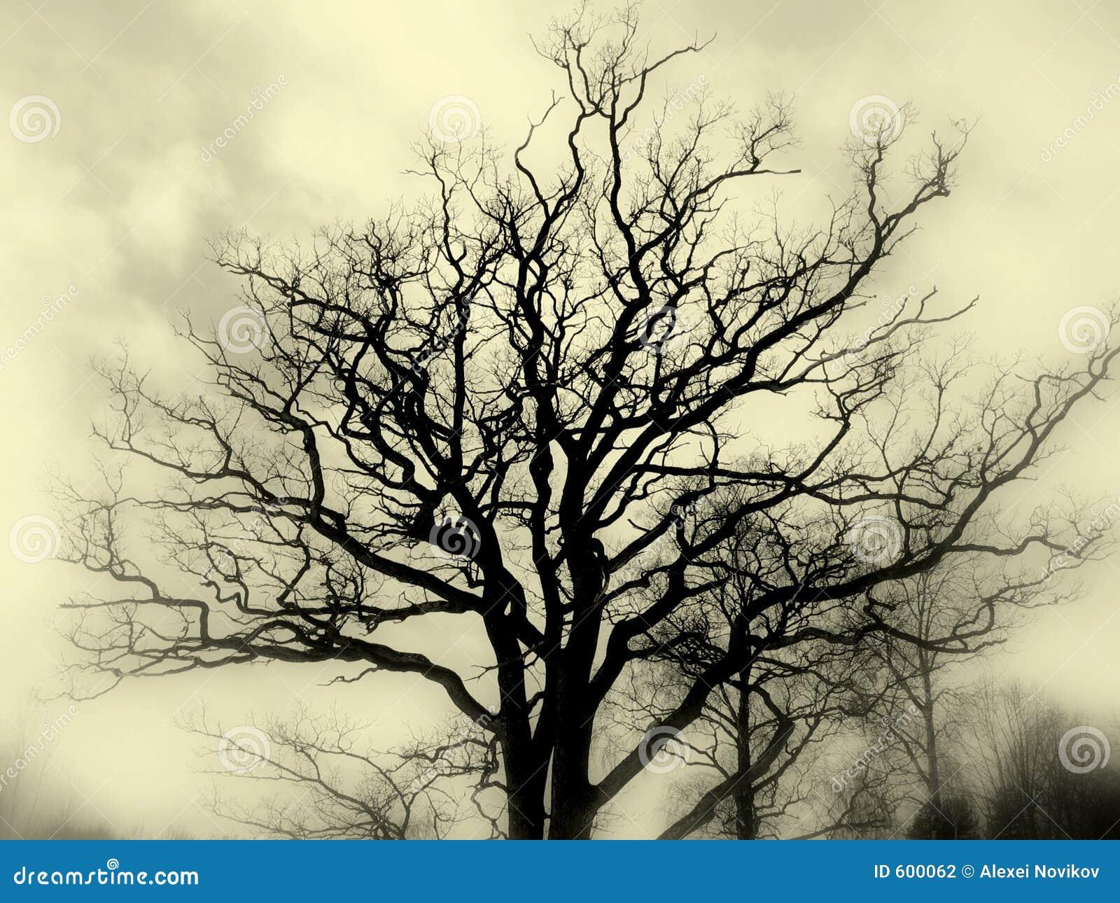 Guerre biologique de silhouette d arbre