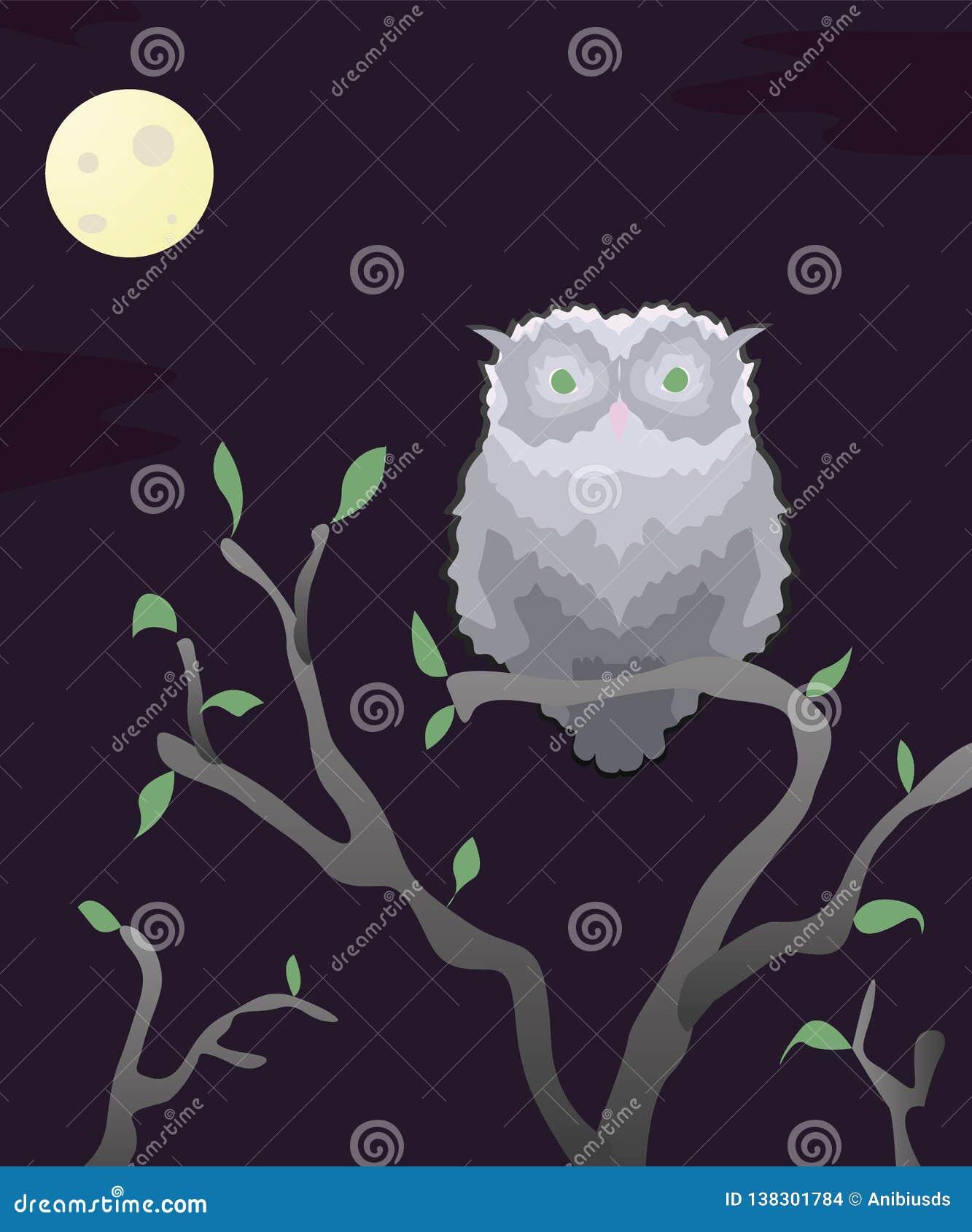Gufi grigi selvaggi dell autoadesivo alla notte con la luna su un ramo di fioritura