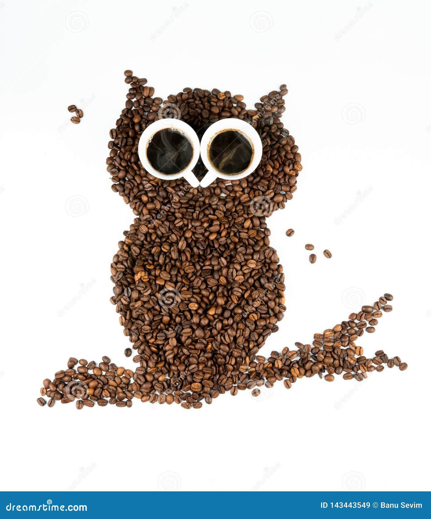 Gufo del caffè su fondo bianco