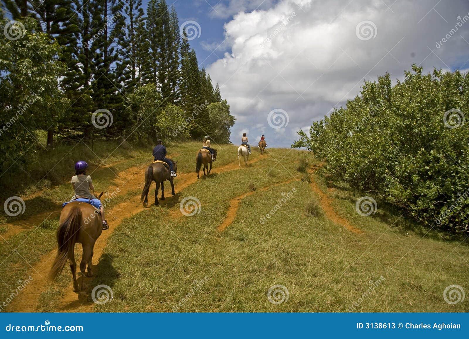 Guida a cavallo