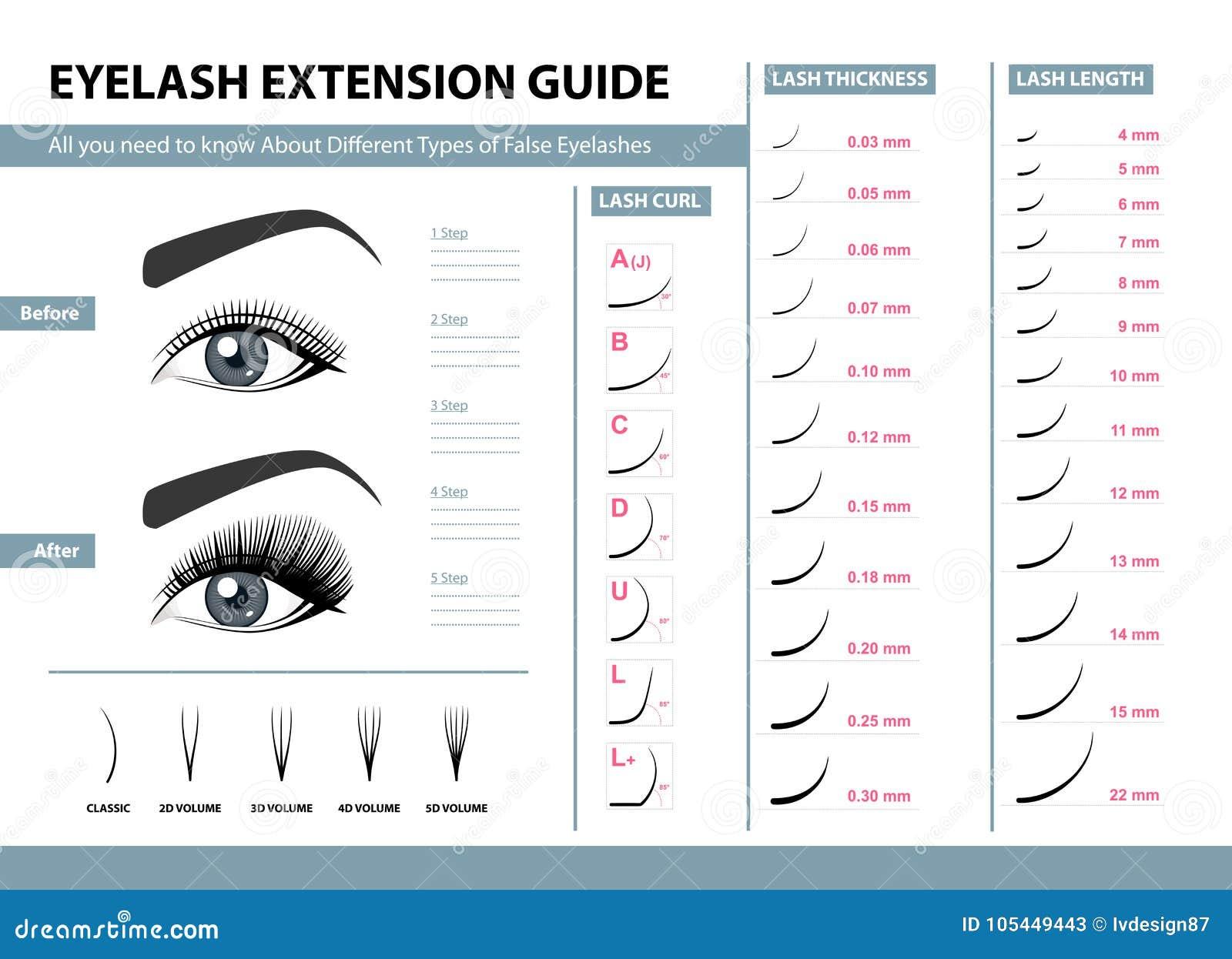 Guida di estensione del ciglio Tipi differenti di cigli falsi Illustrazione di vettore di Infographic Modello per trucco