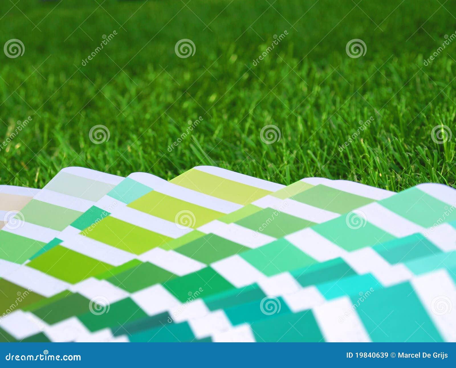 Guide de couleur dans l herbe