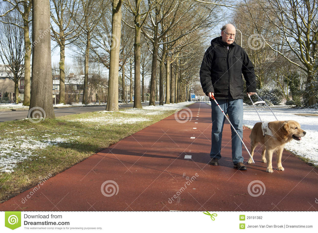 Guide Dog Is Helping A Blind Man Stock Photography - Image ...