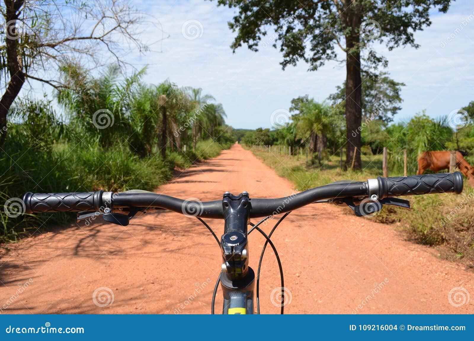 Guidon de vélo de montagne chez Dusty Jungle Road, Pantanal, Brésil