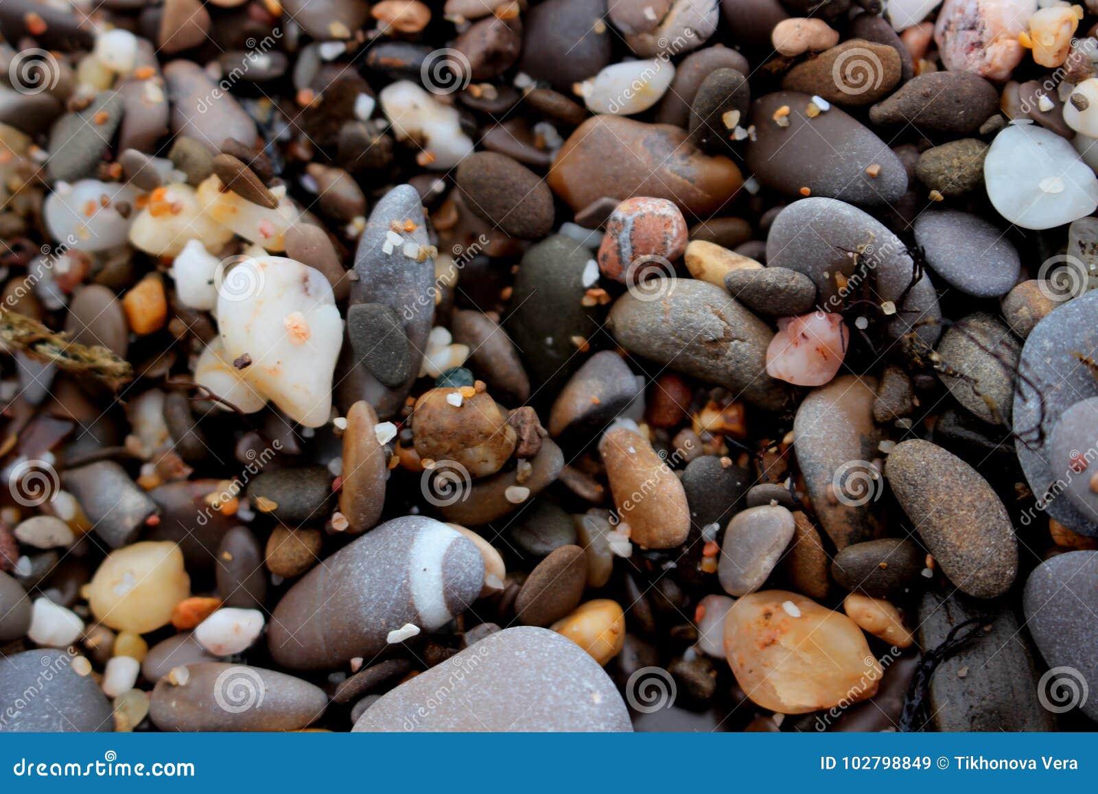 Guijarros multicolores de la playa