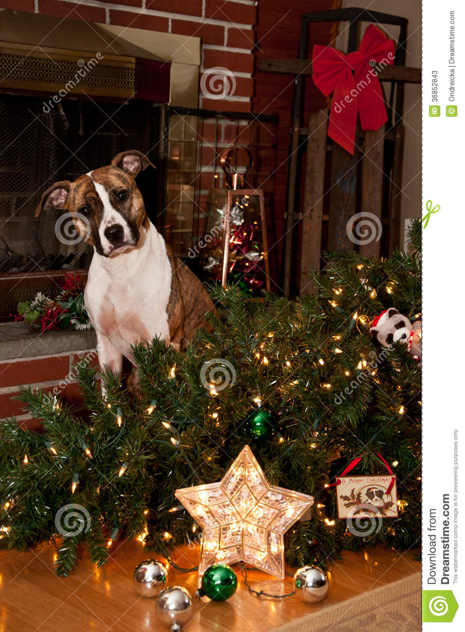 Puppy Christmas Ornaments