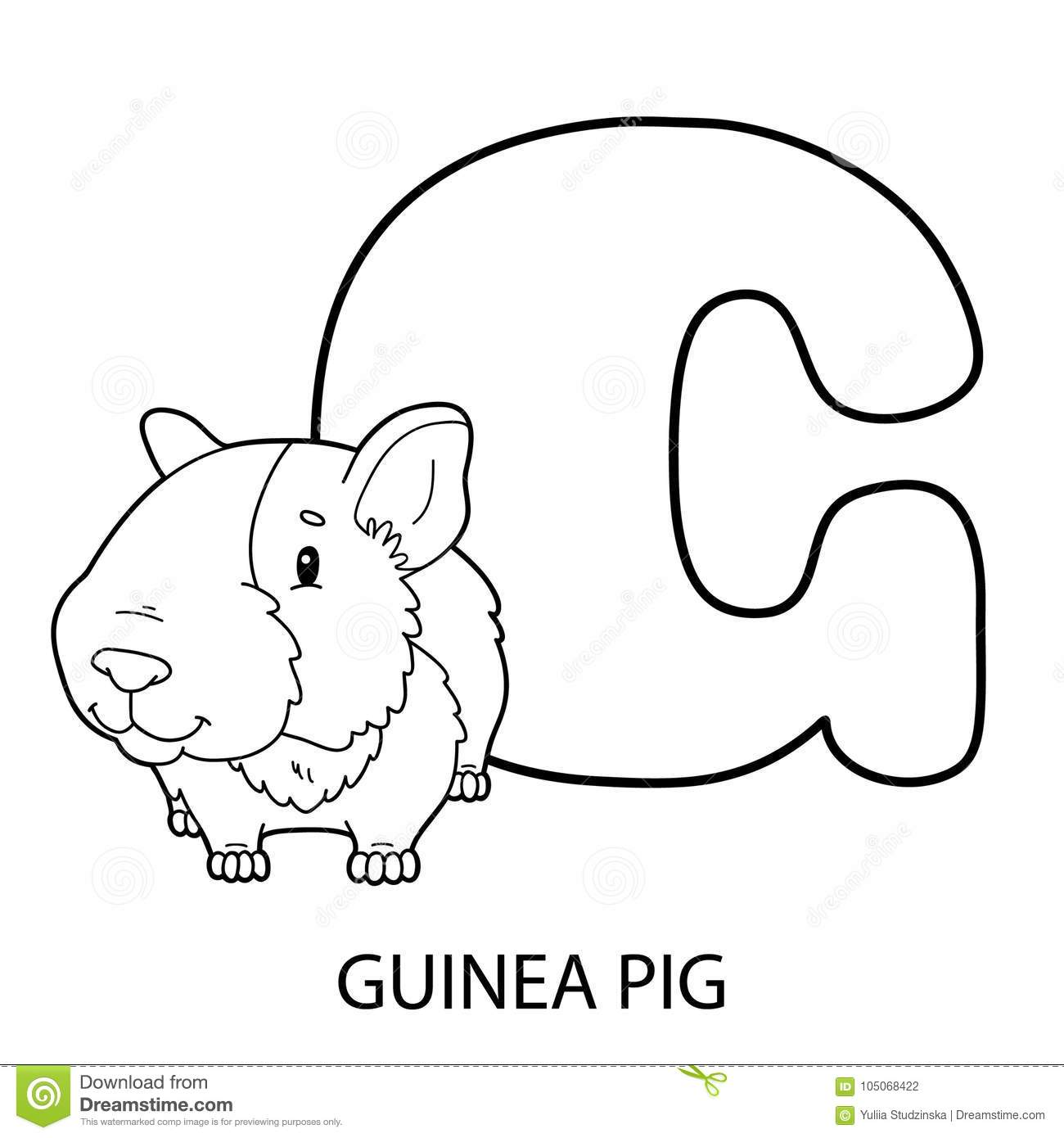 Download Guinea Pig Alphabet Coloring Page Stock Vector