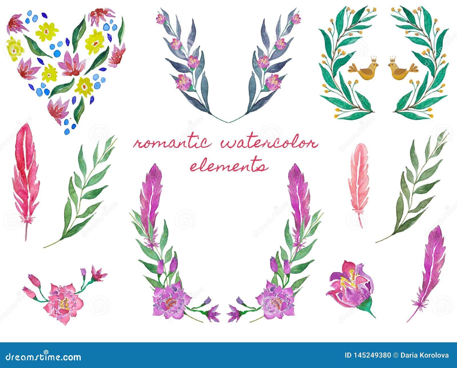 Guirlande et coeur floraux Ensemble de trames d aquarelle Illustrations botaniques