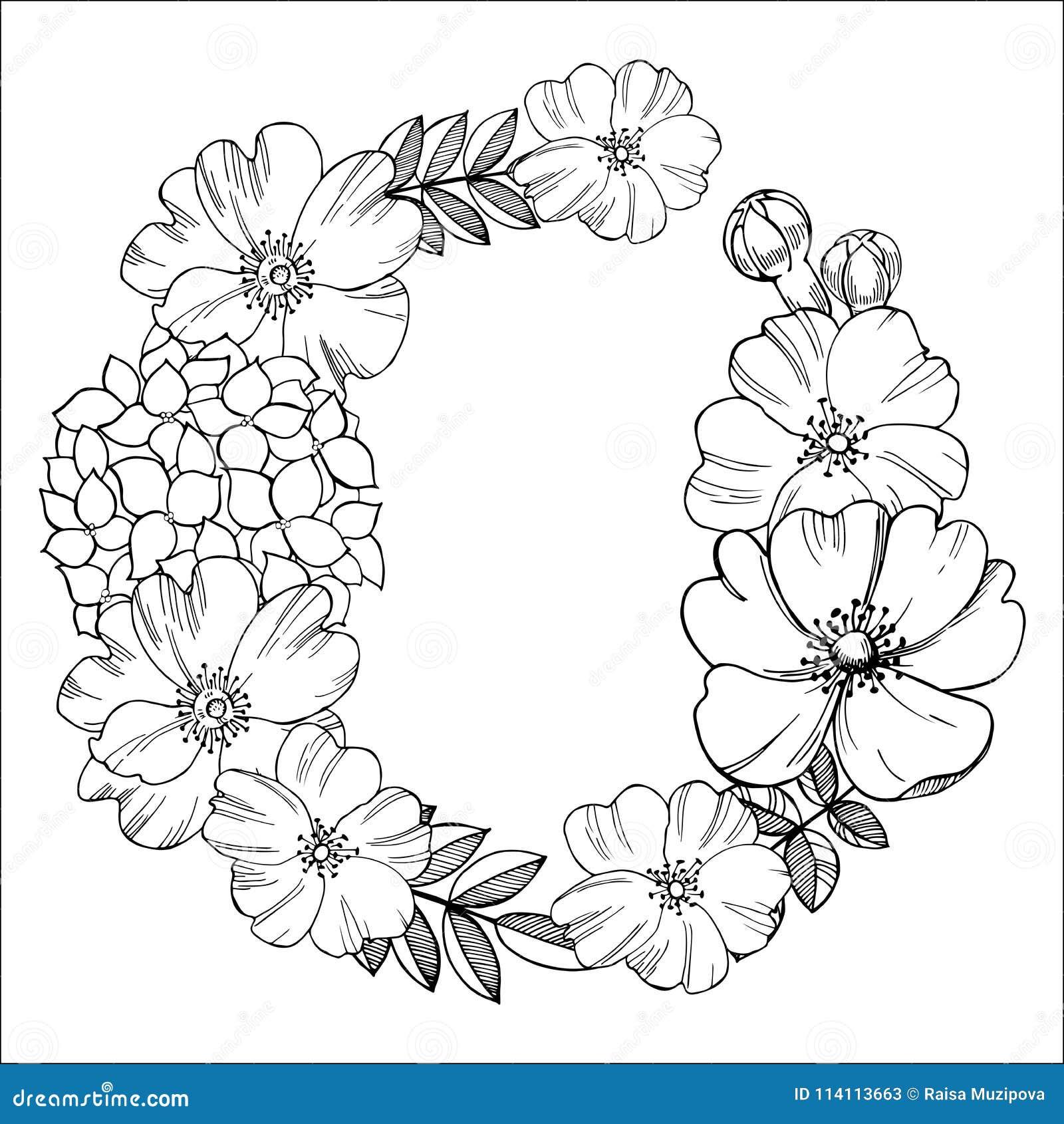 Guirlande Florale Dessin Noir Et Blanc Des Fleurs Illu De