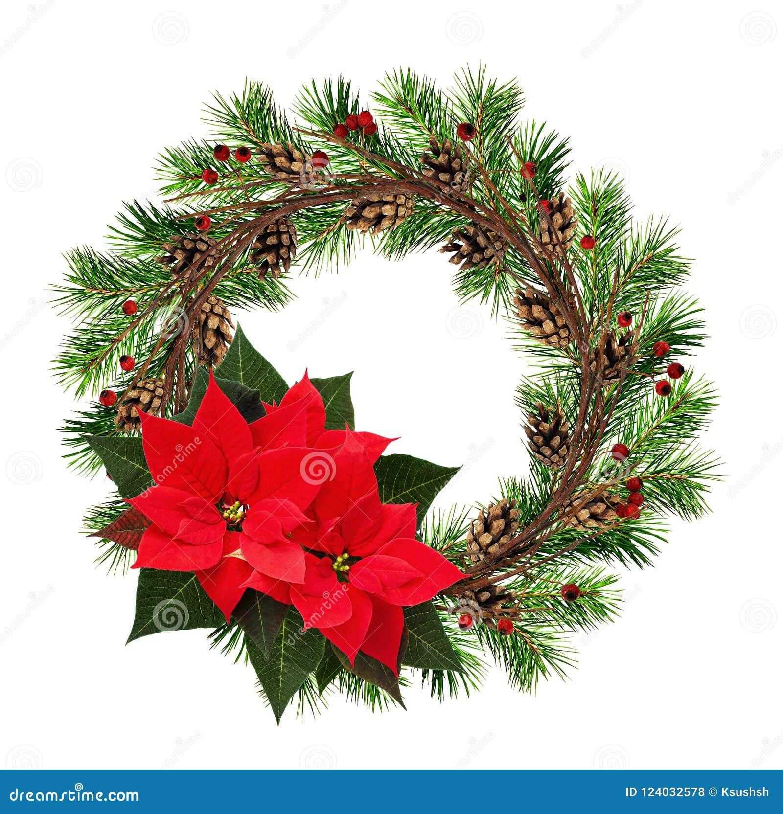 Guirlande ronde des branches sèches de brindilles et d arbre de Noël avec le rouge