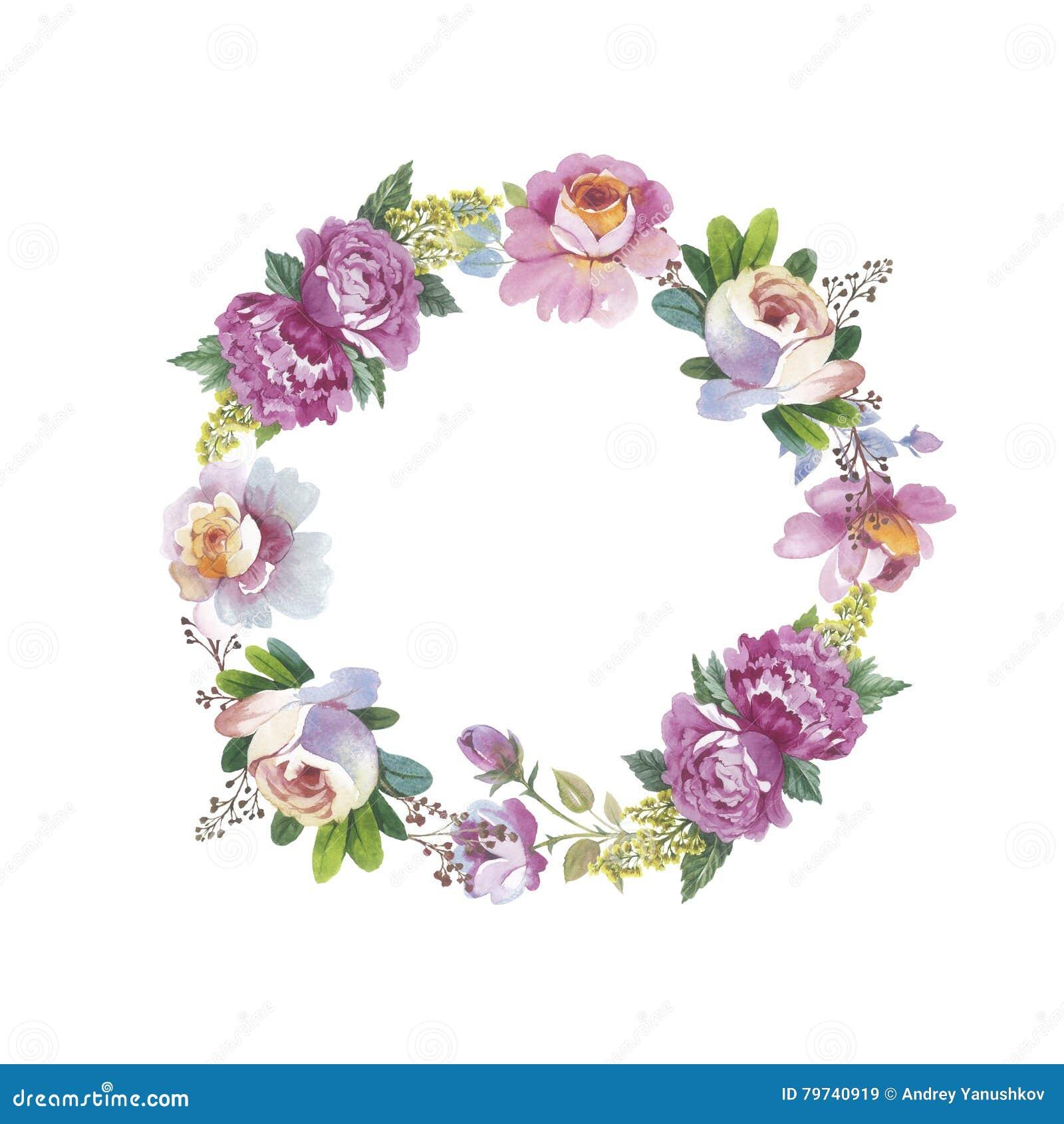 Guirnalda color de rosa de la flor del Wildflower en un estilo de la acuarela aislada