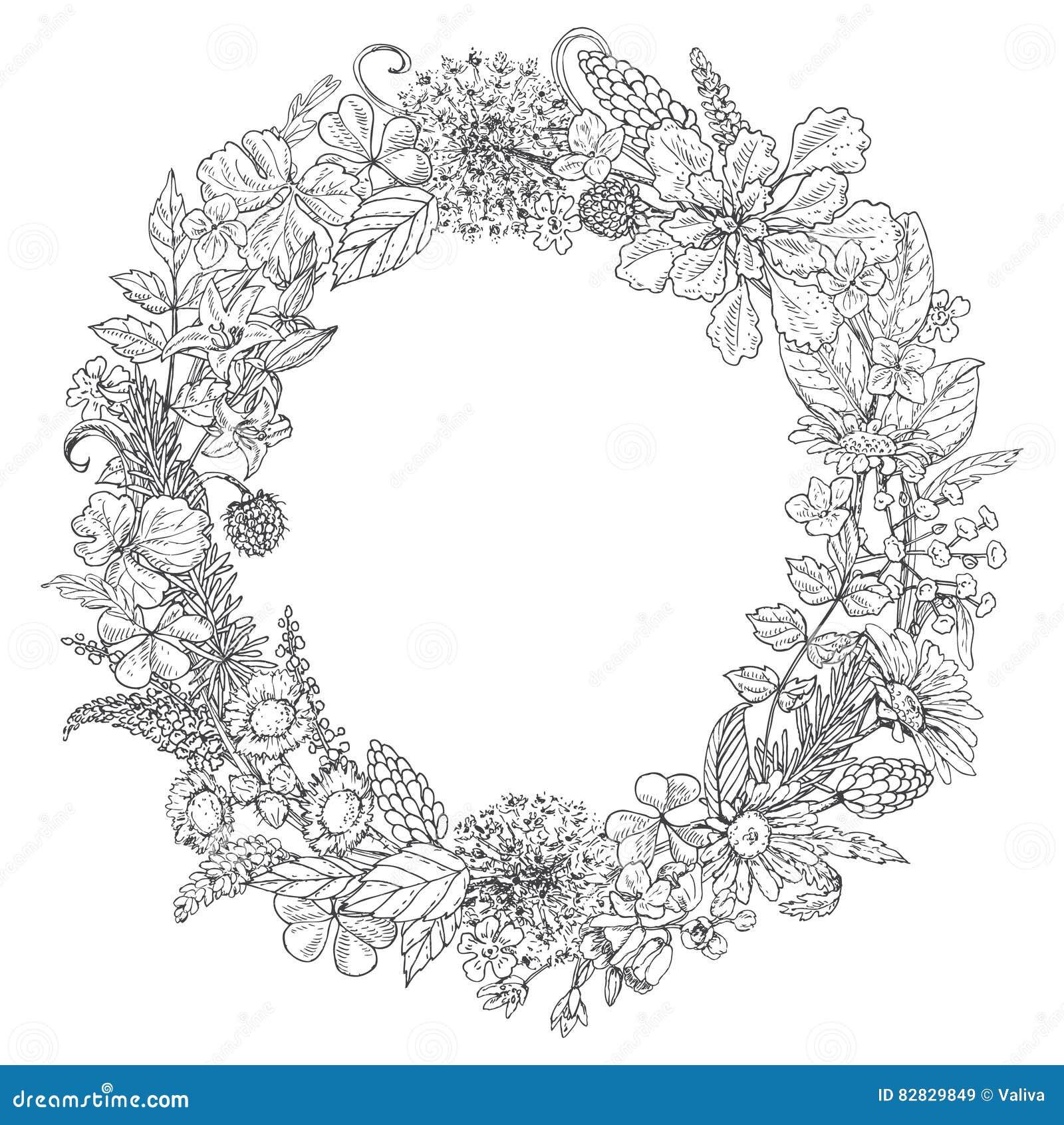 Guirnalda Floral Del Garabato Ilustración del Vector - Ilustración ...