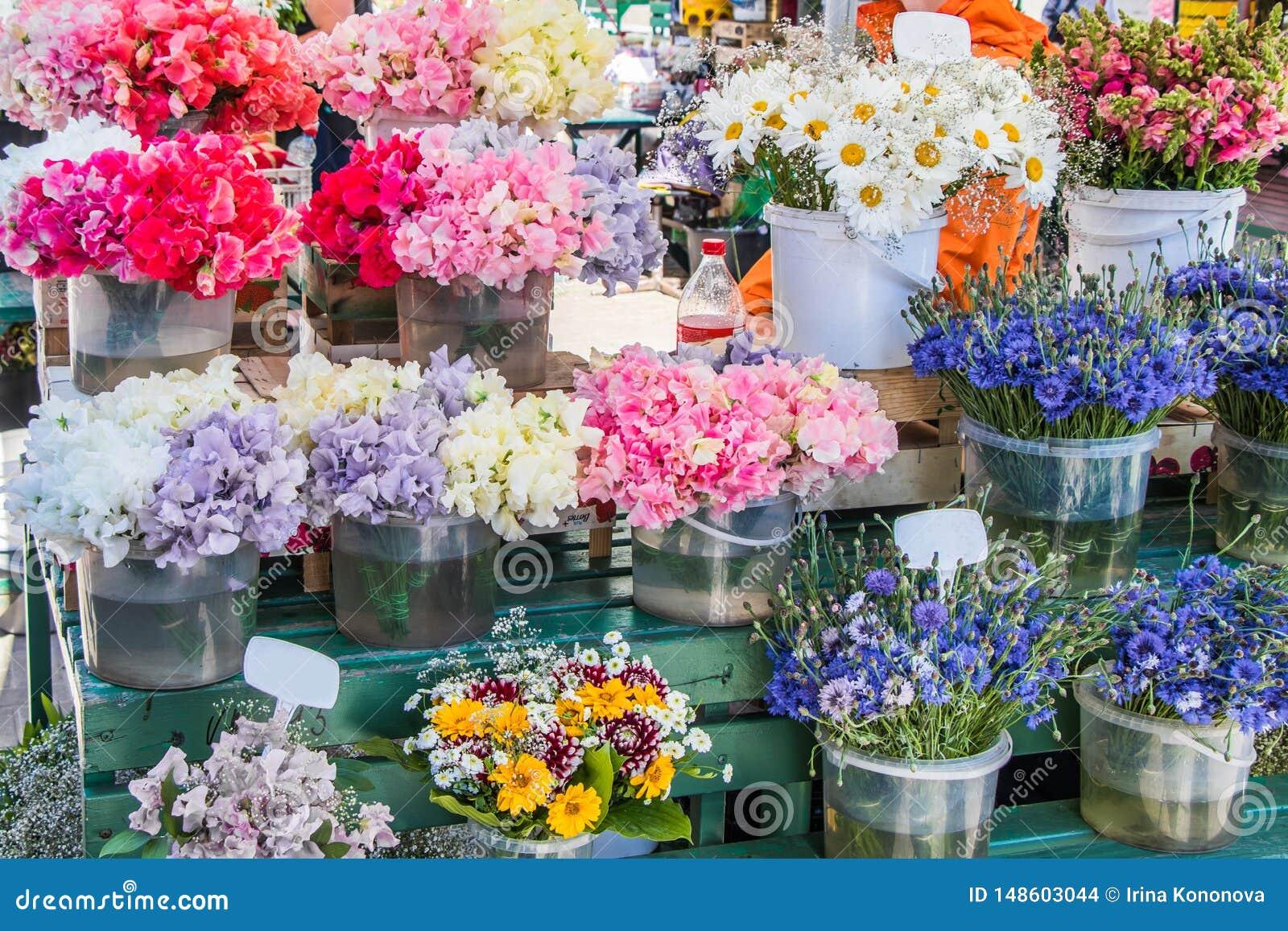 Guisantes de olor, manzanilla, aciano y otras flores