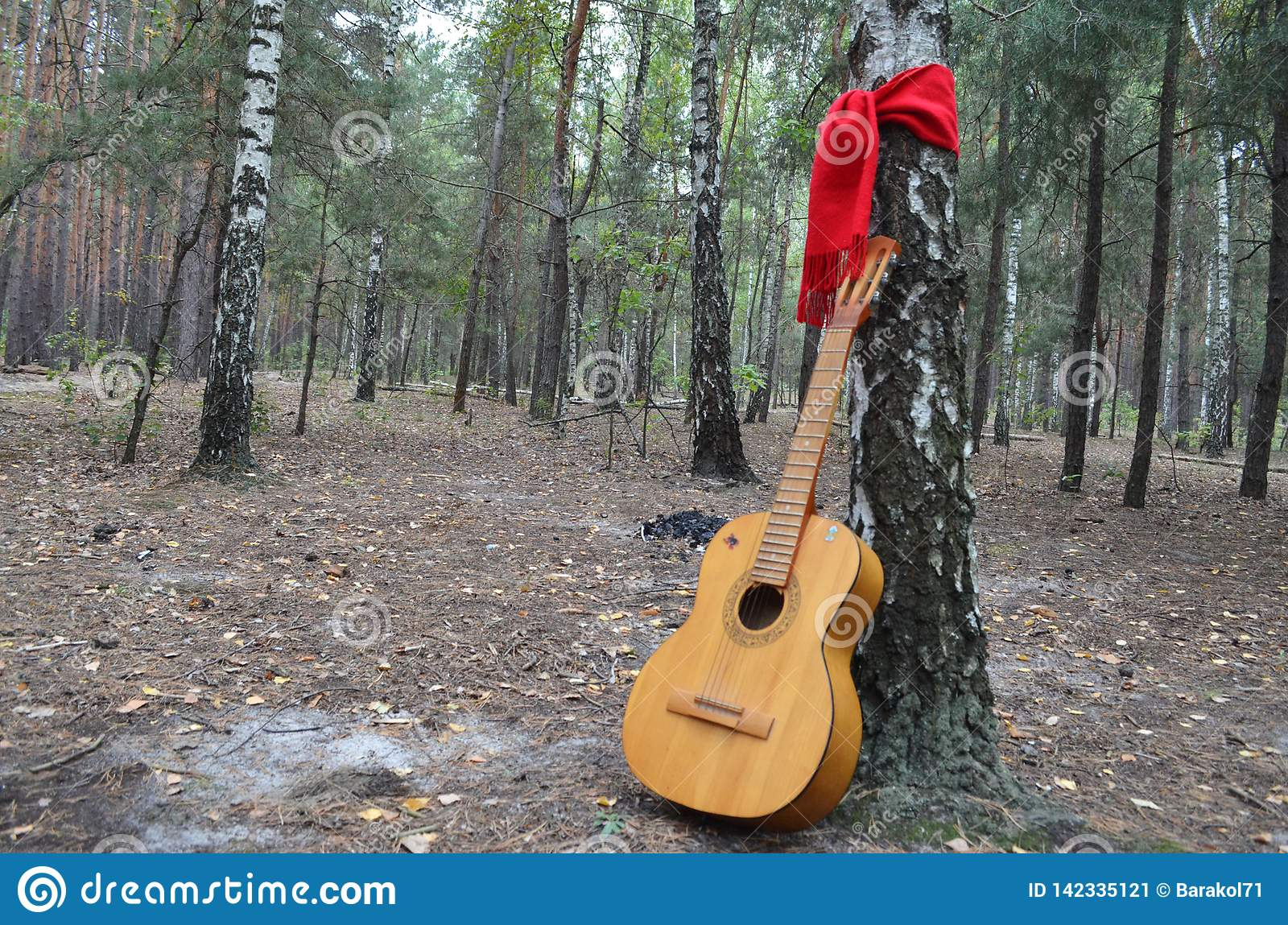 Guitar in the middle of the forest with a red scarf tied around