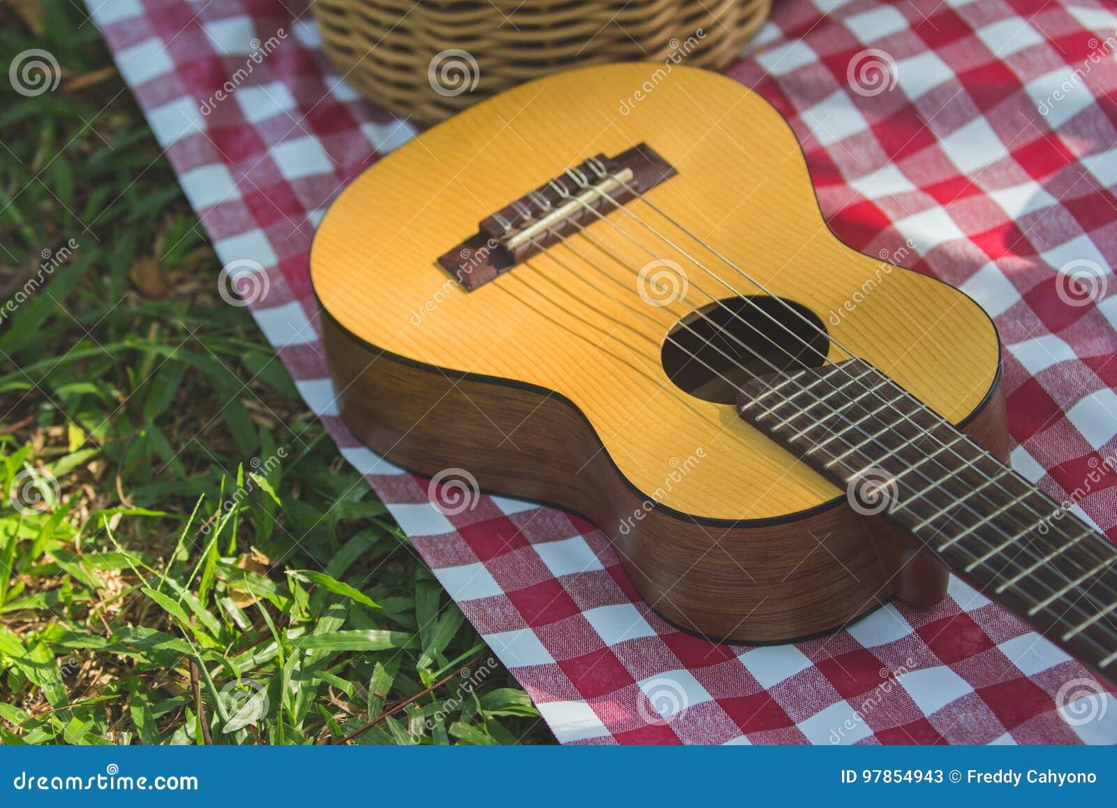 Guitarra do piquenique exterior