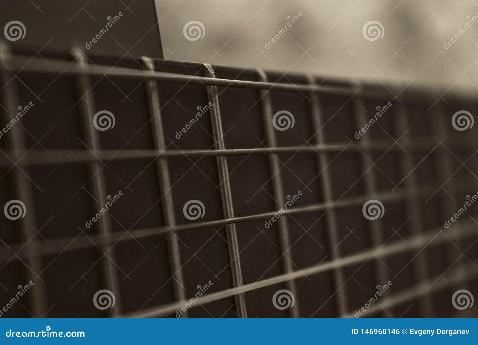 Guitarra Fretboard do Sepia