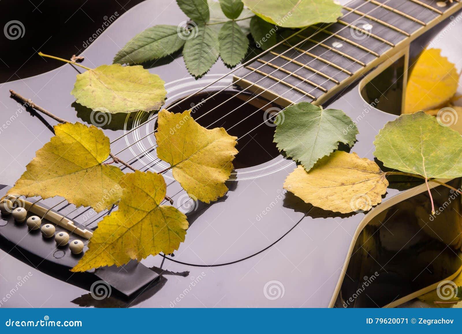 Guitarra nas folhas do outono