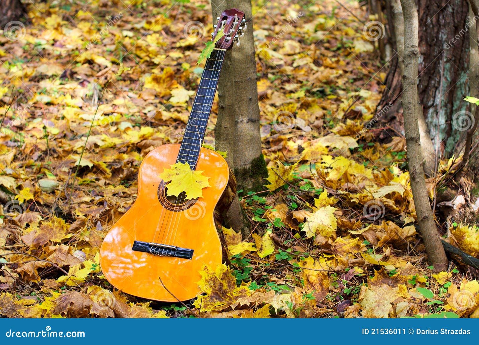 Guitarra no outono